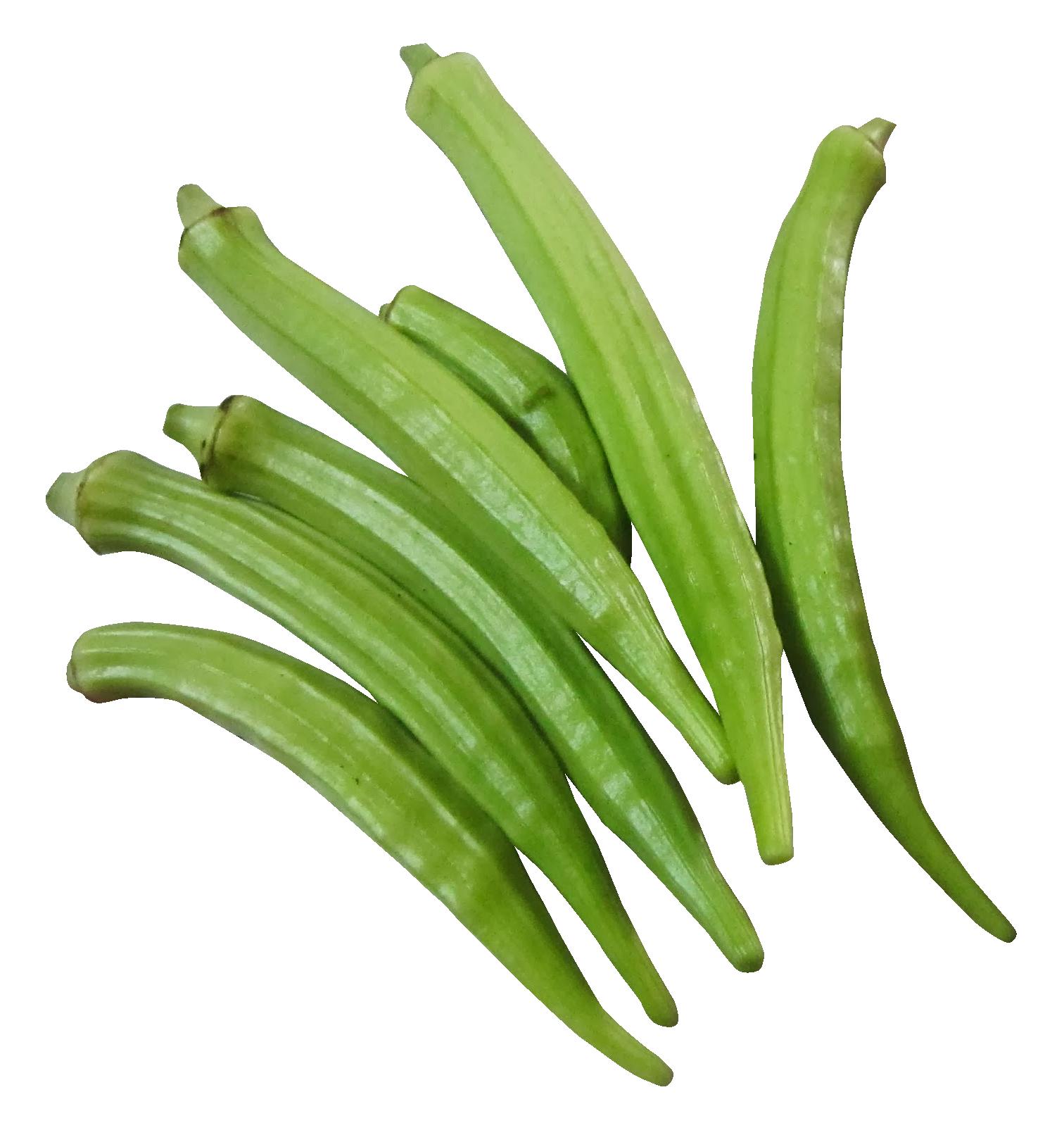 Fresh Okra PNG Image