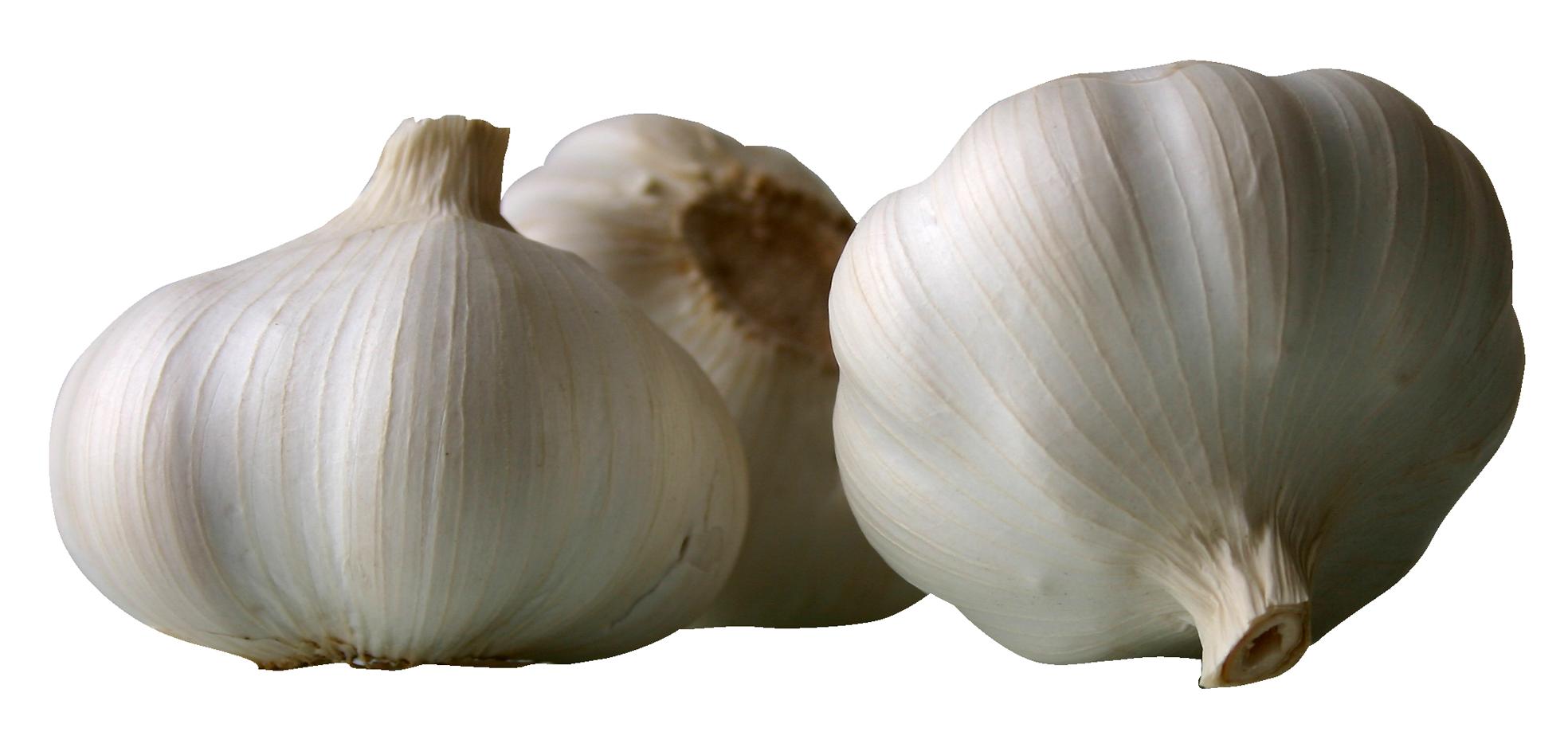 Garlics PNG Image