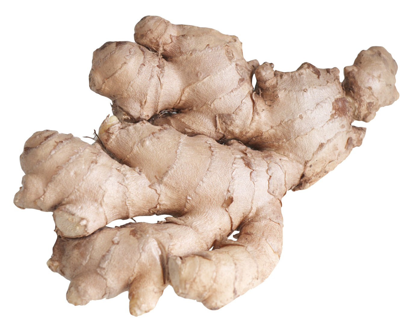 Ginger Root PNG Image