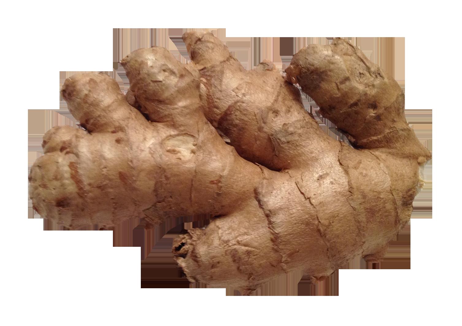 Ginger PNG Image