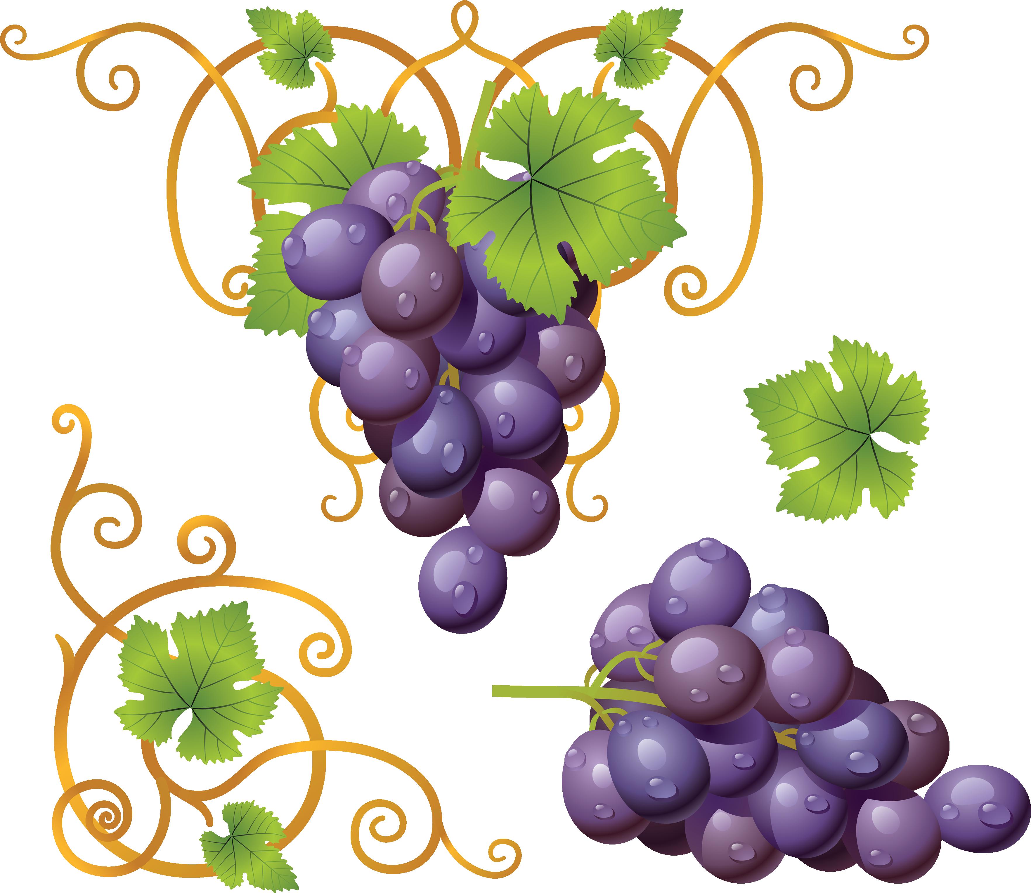 Grapes PNG Image