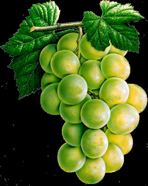 Green Grapes PNG Image
