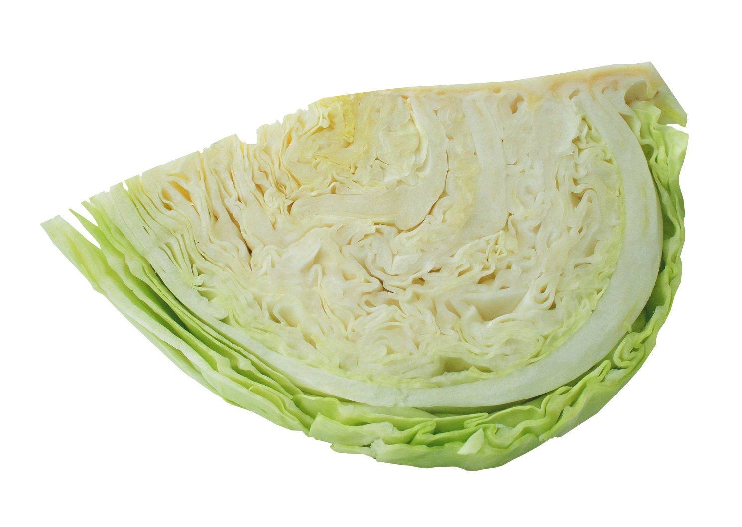 Half Cabbage PNG Image