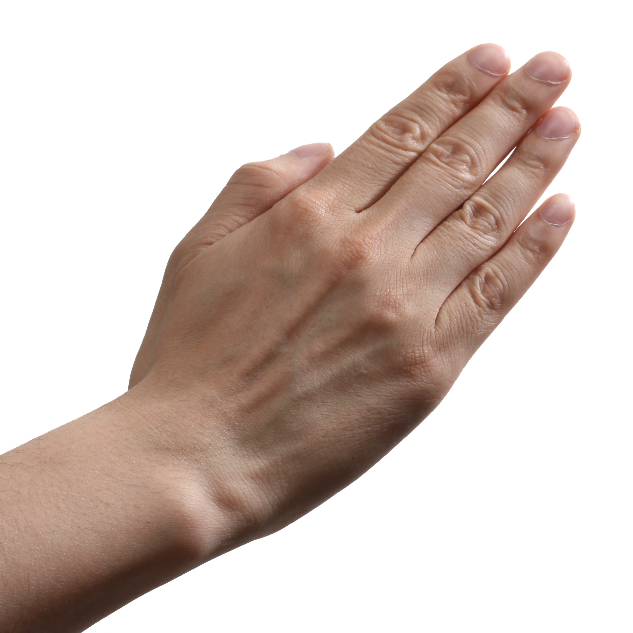 Hands Png Image For Free Download Download hands transparent png image for free. hands png image for free download