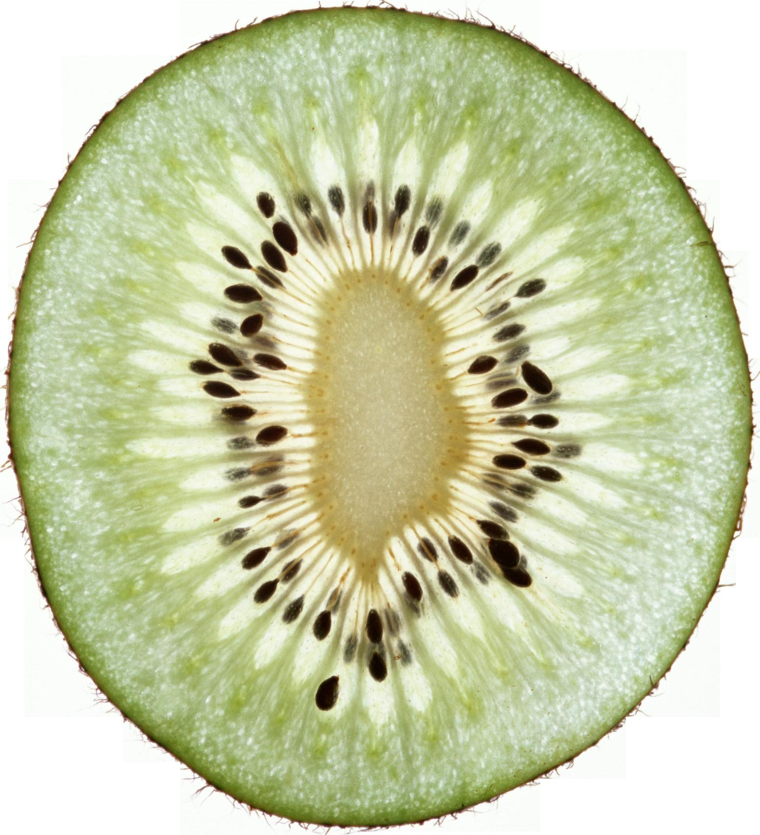 Kiwi Halved PNG Image