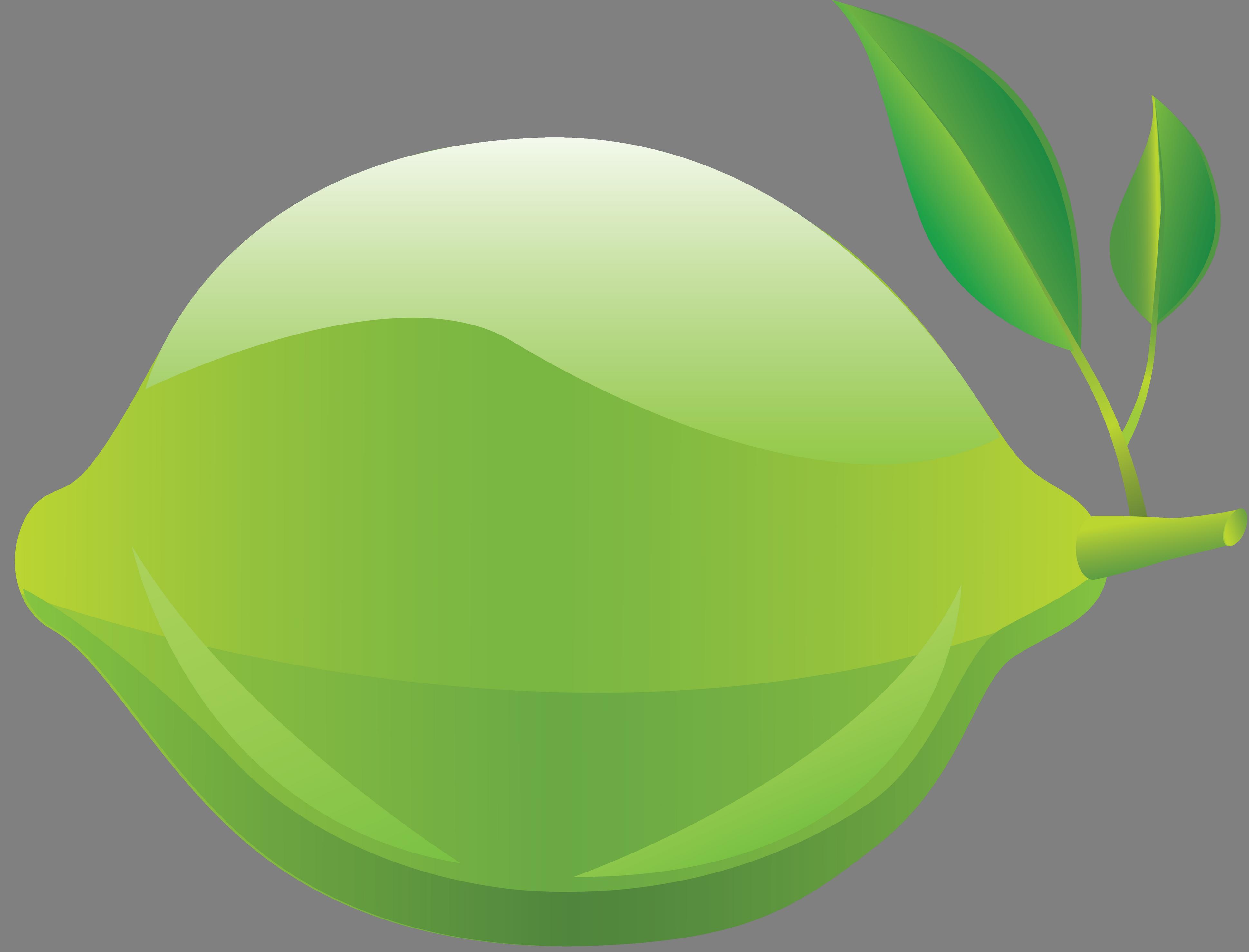 Lime PNG Image