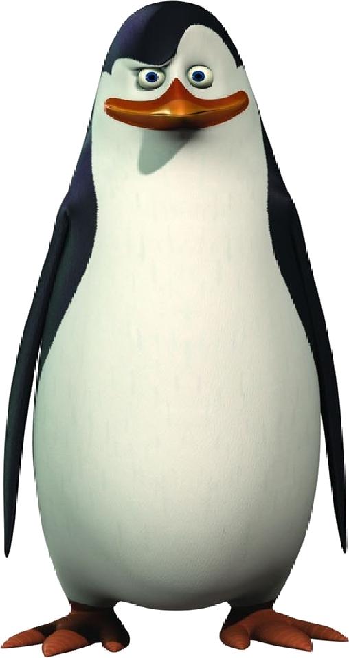 Madagascar Penguin