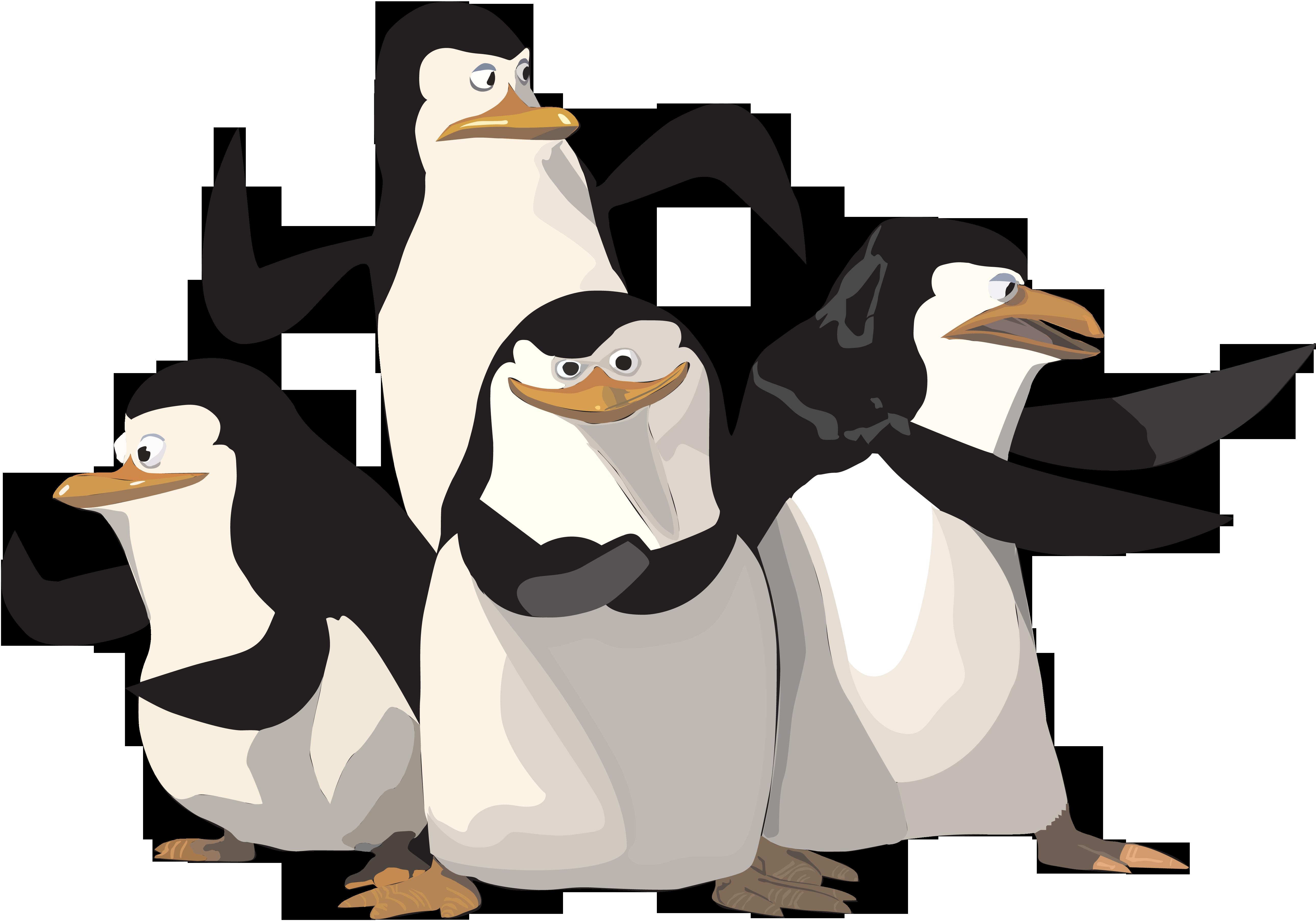 Madagascar Penguin PNG Image