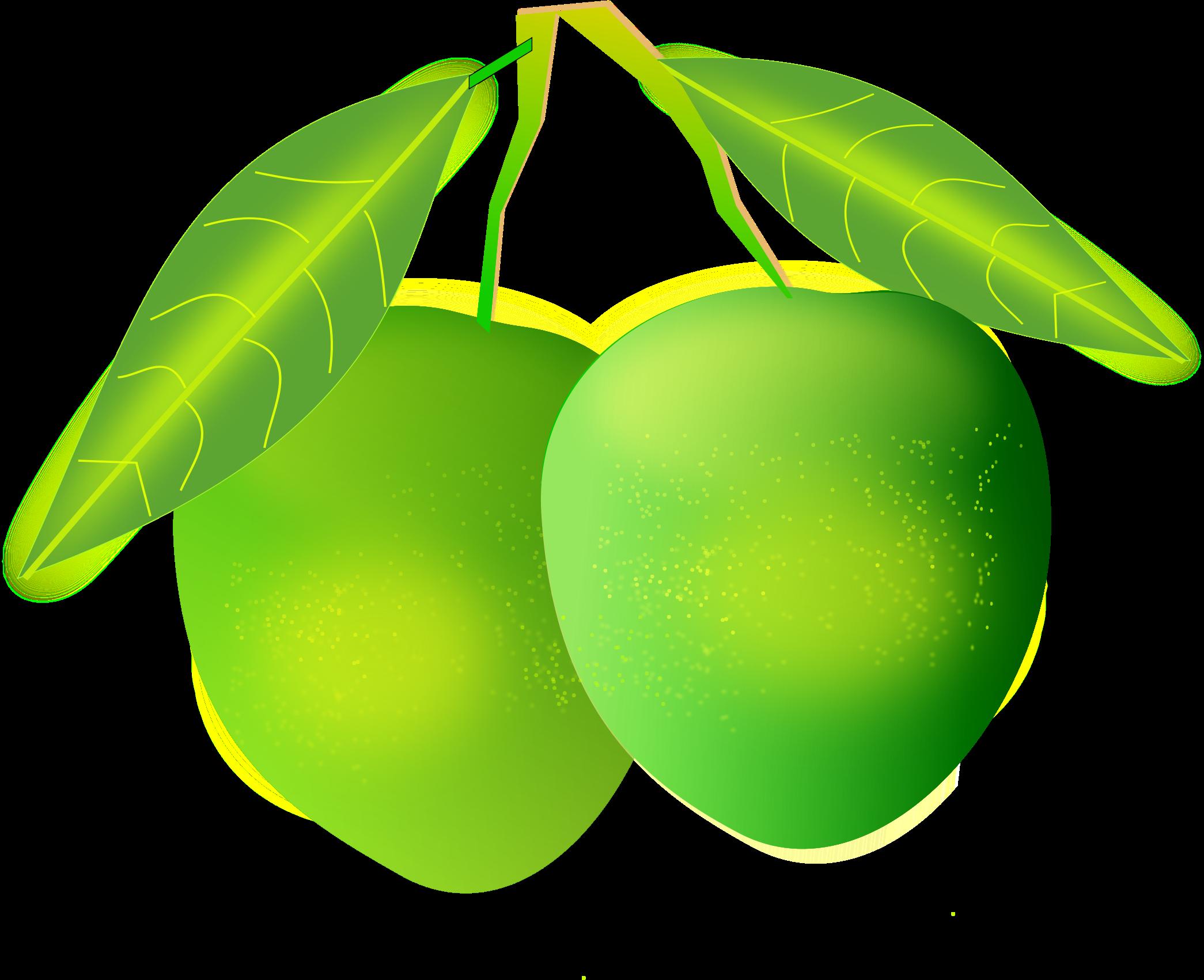 Mango Clipart PNG Image