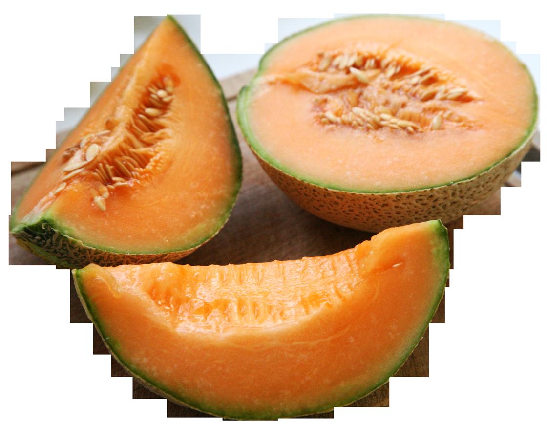 Melon Sliced