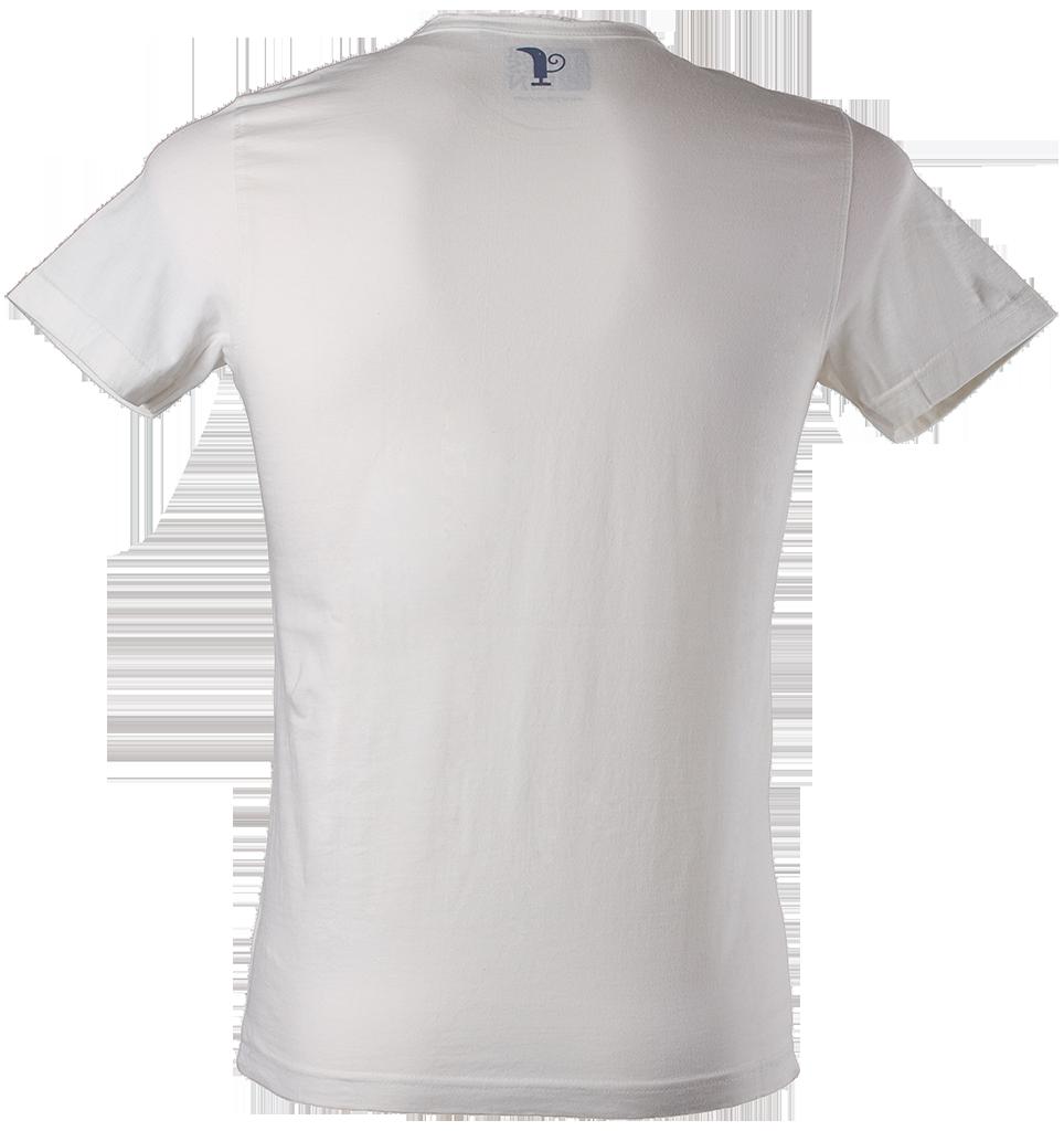 Men's Polo Shirt PNG Image