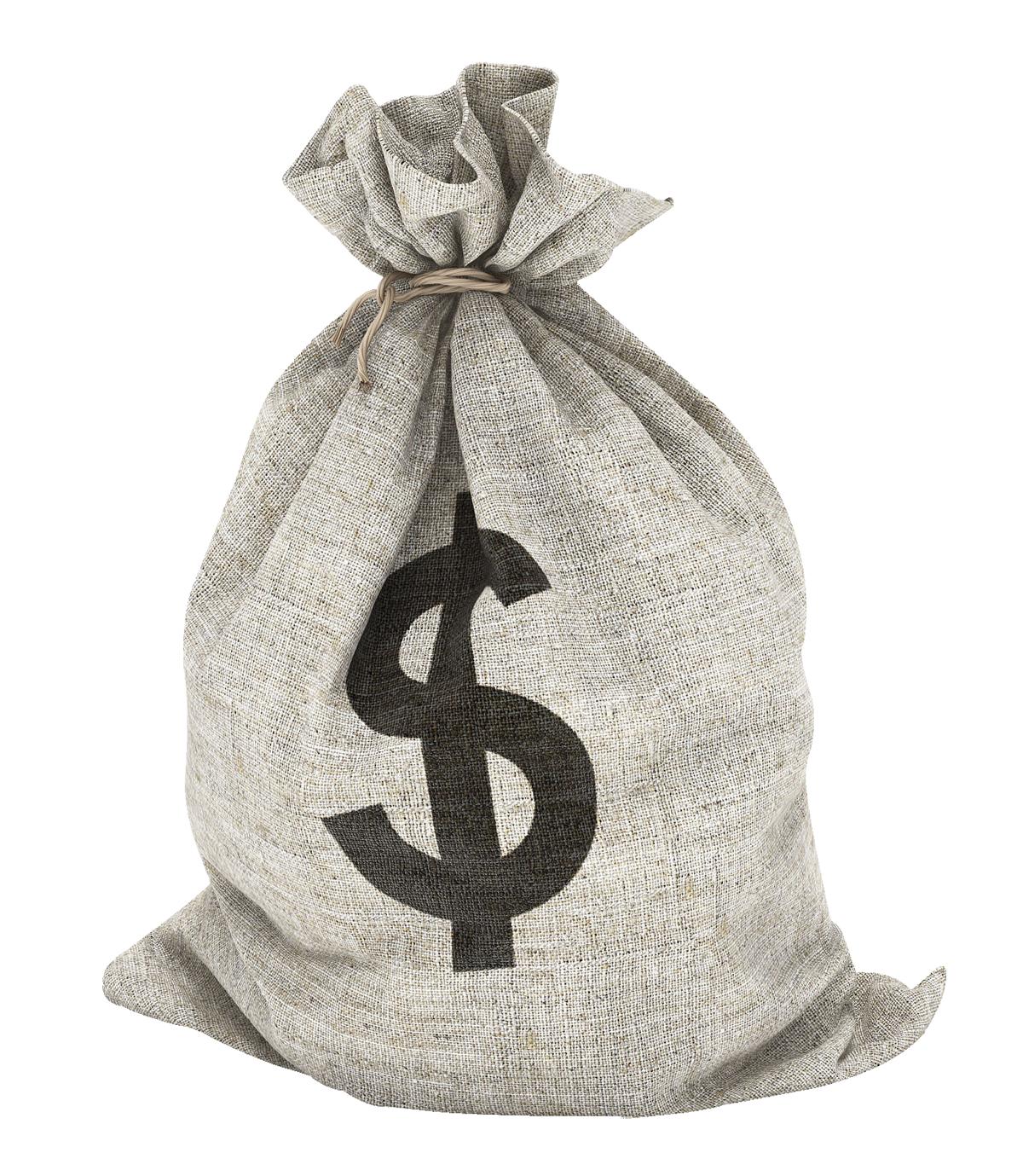 Money Bag PNG Image - PurePNG   Free transparent CC0 PNG ...