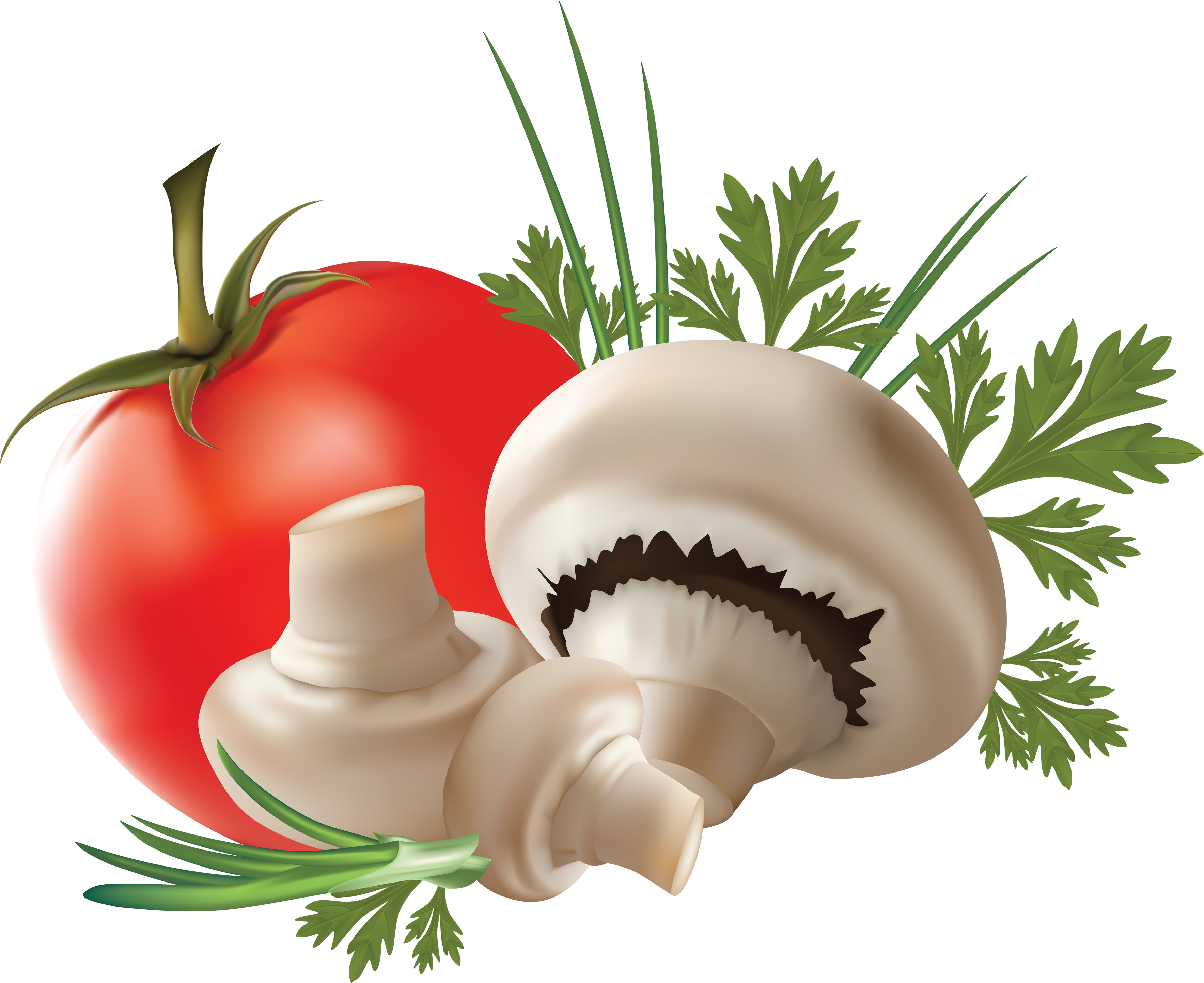Mushroom with Tomato PNG Image