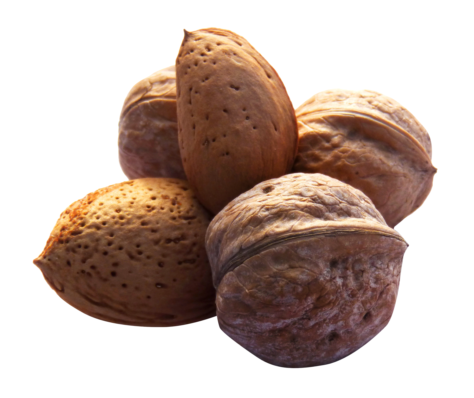 Nuts PNG Image