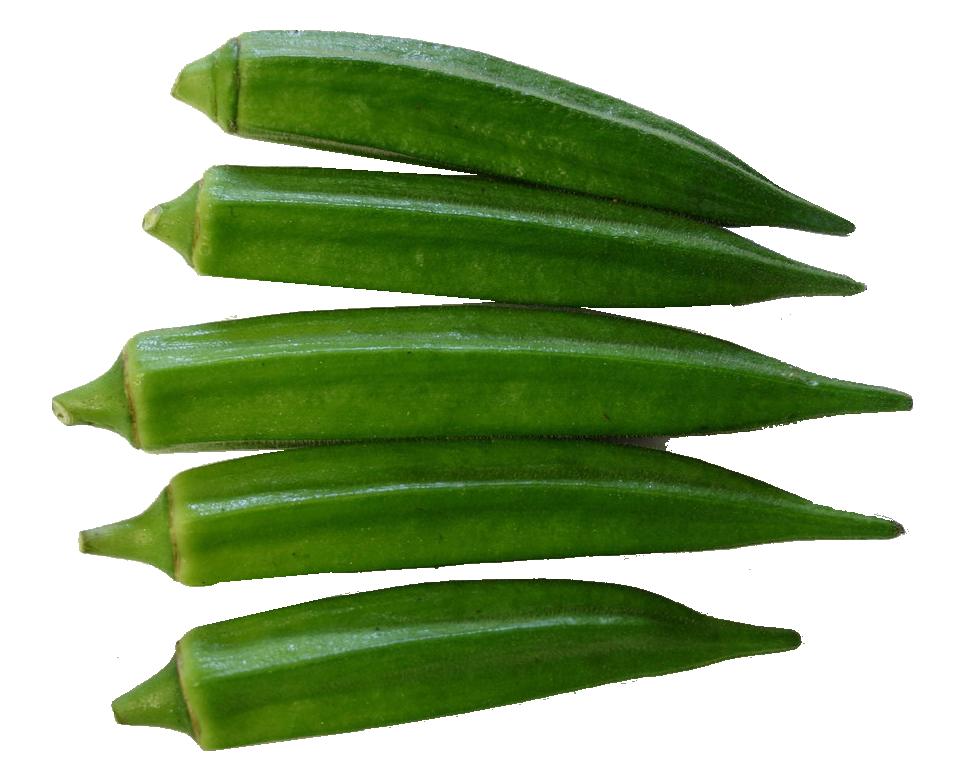 Okra PNG Image