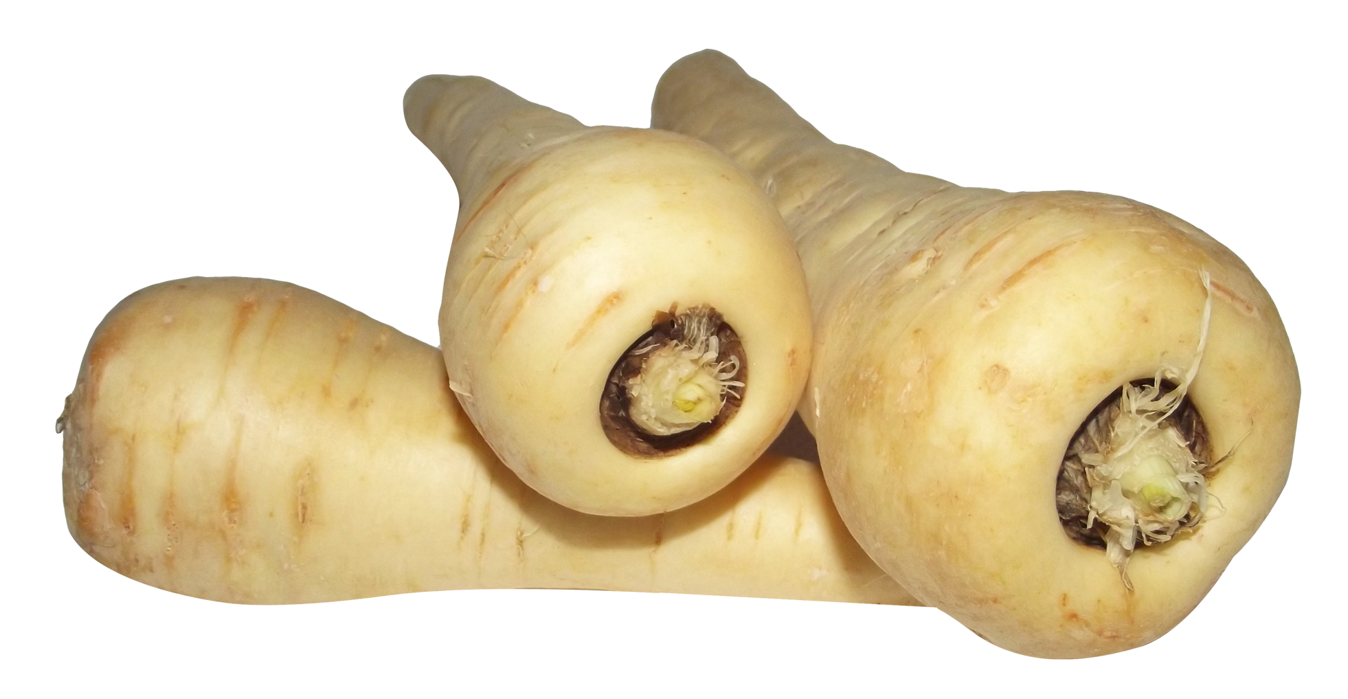 Parsnip PNG Image