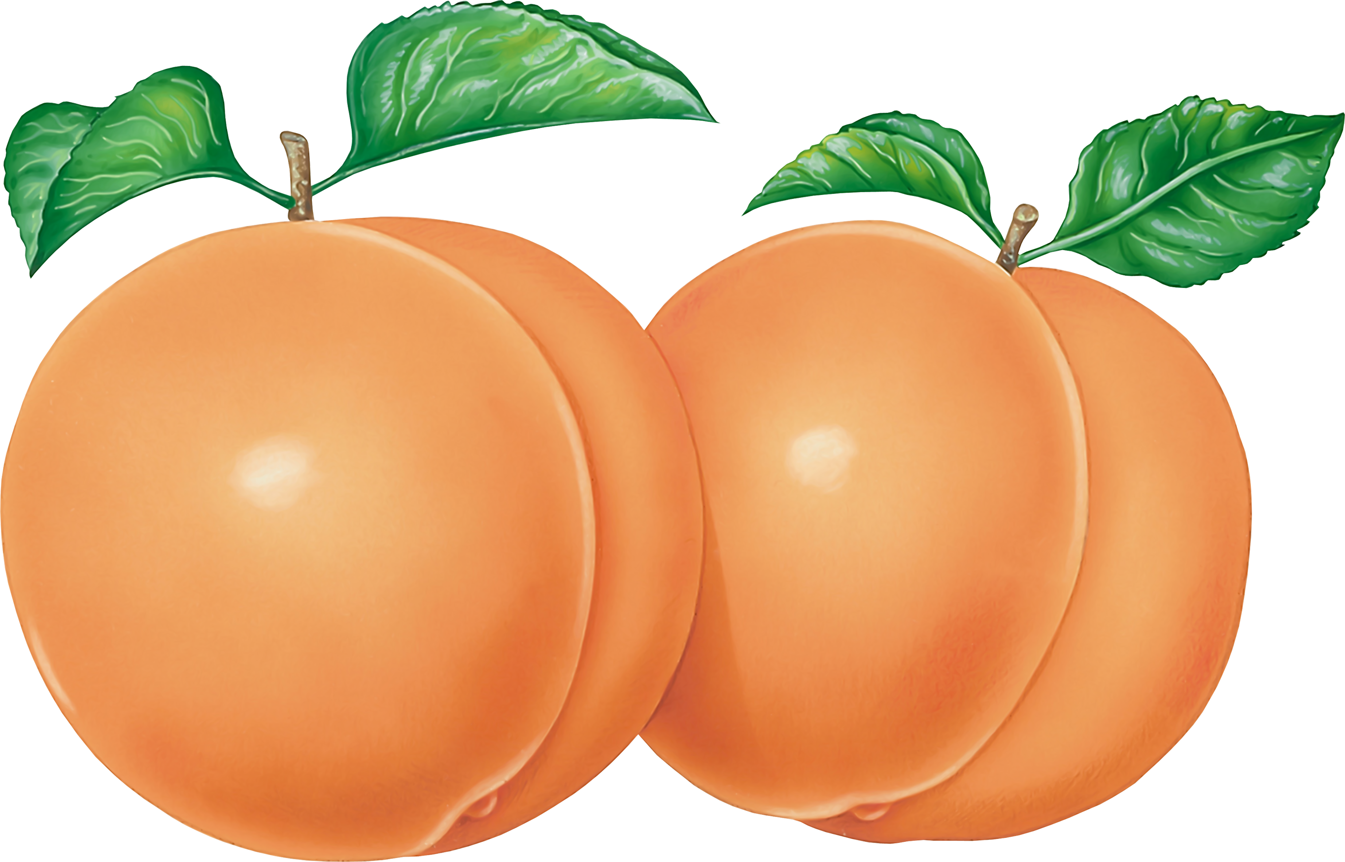 Peaches PNG Image