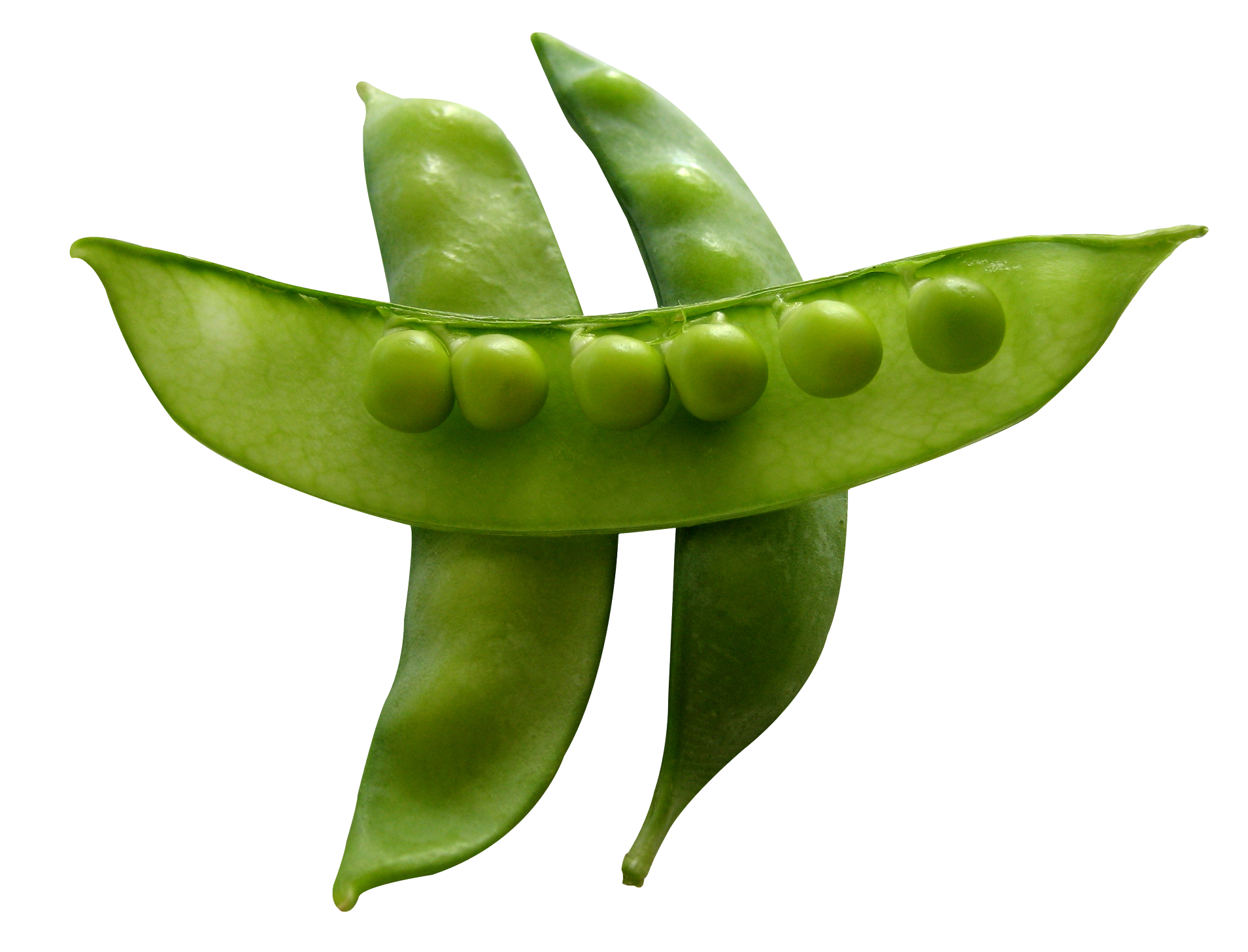 Pea PNG Image