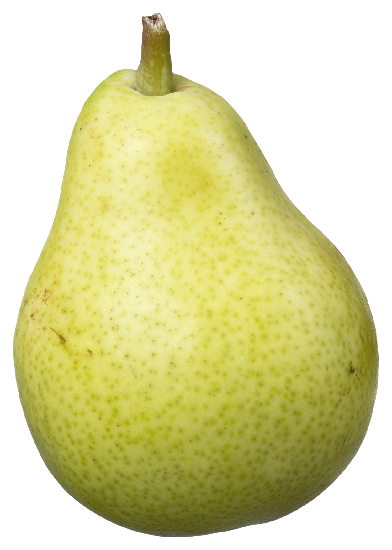 Pear Fruits PNG Image - PurePNG | Free transparent CC0 PNG ...