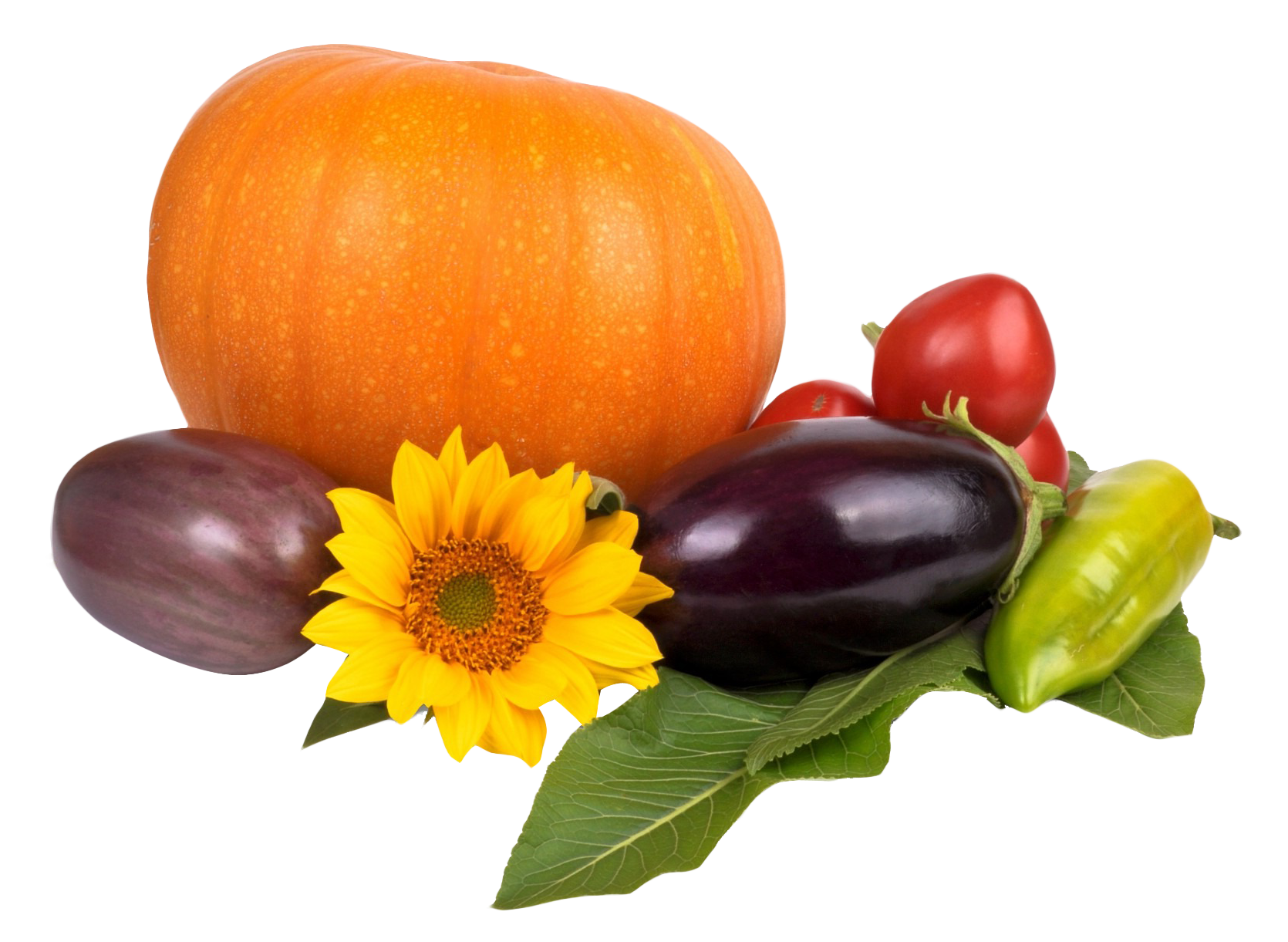 Pumpkin Tomato Pepper Eggplant PNG Image