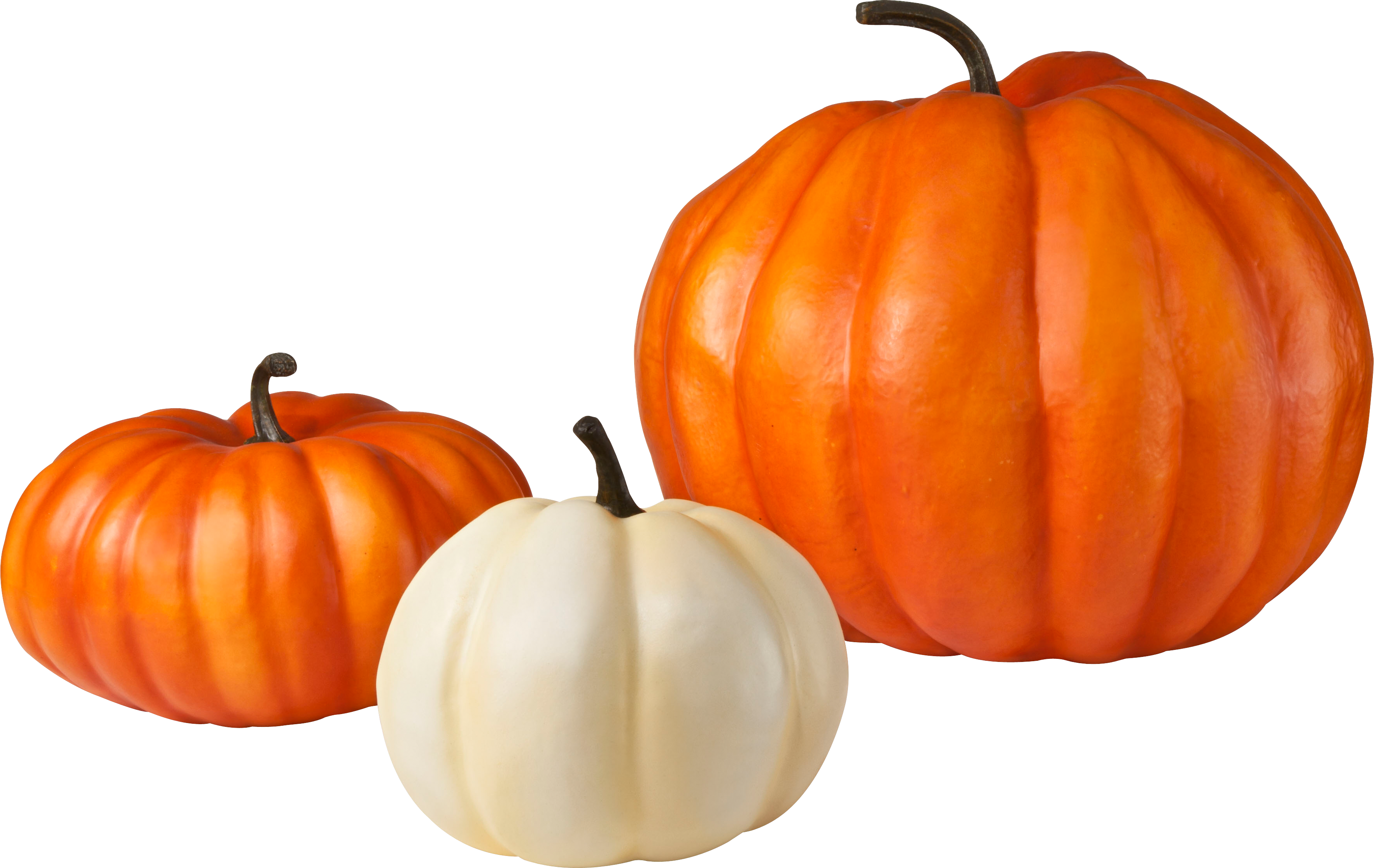 pumpkin png image purepng free transparent cc0 png orange juice brands logos orange juice company logos