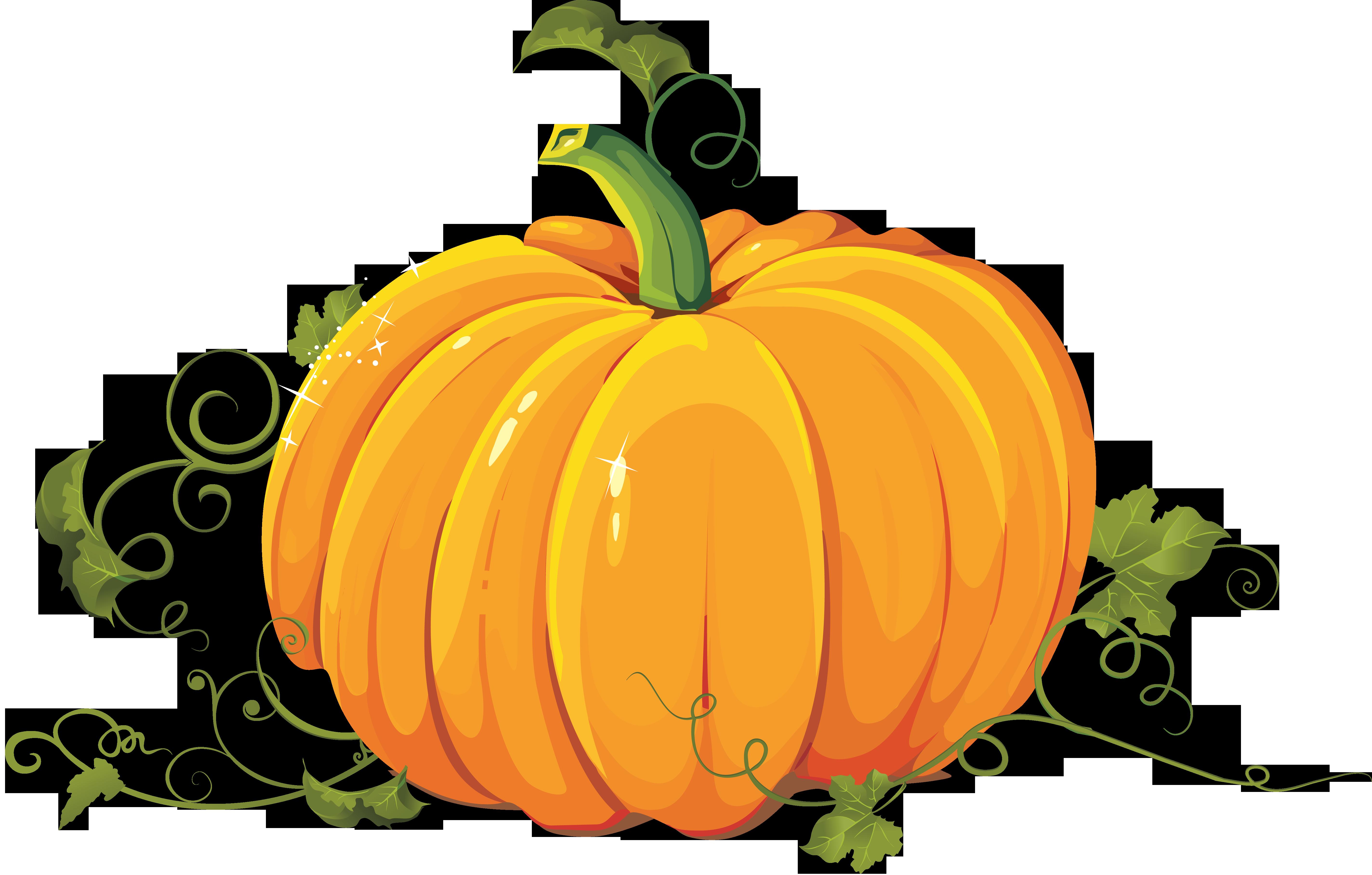 Pumpkin PNG Image