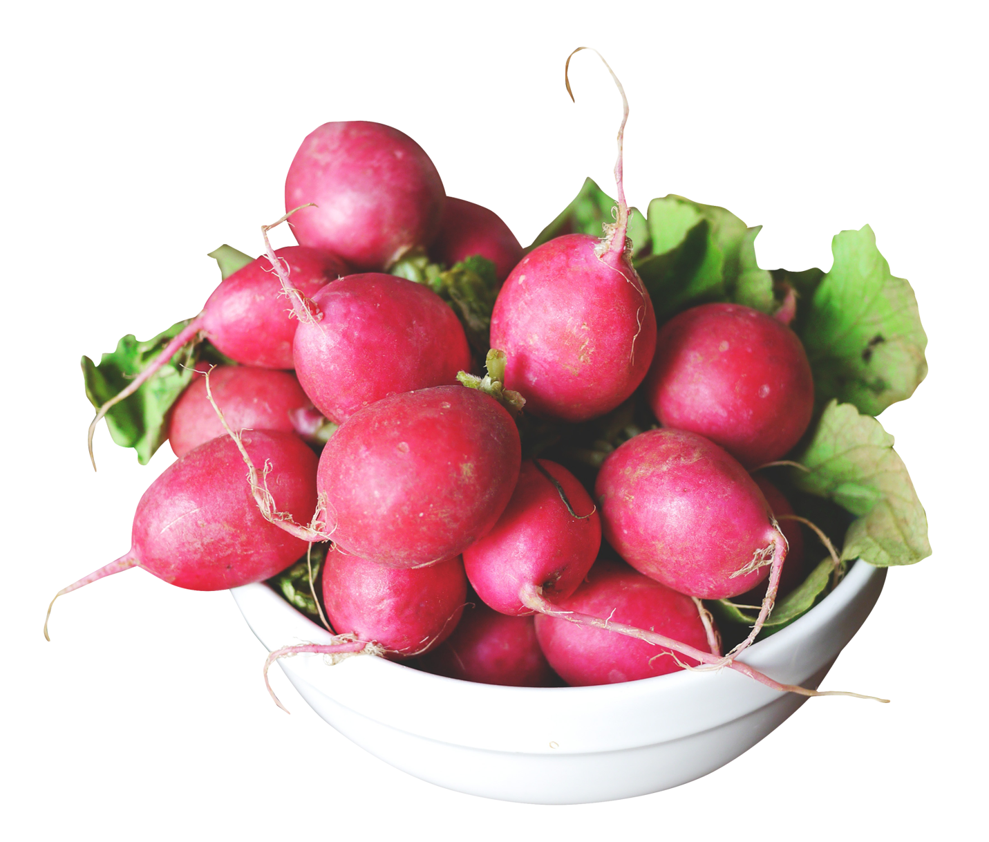 Radish in a Bowl PNG Image
