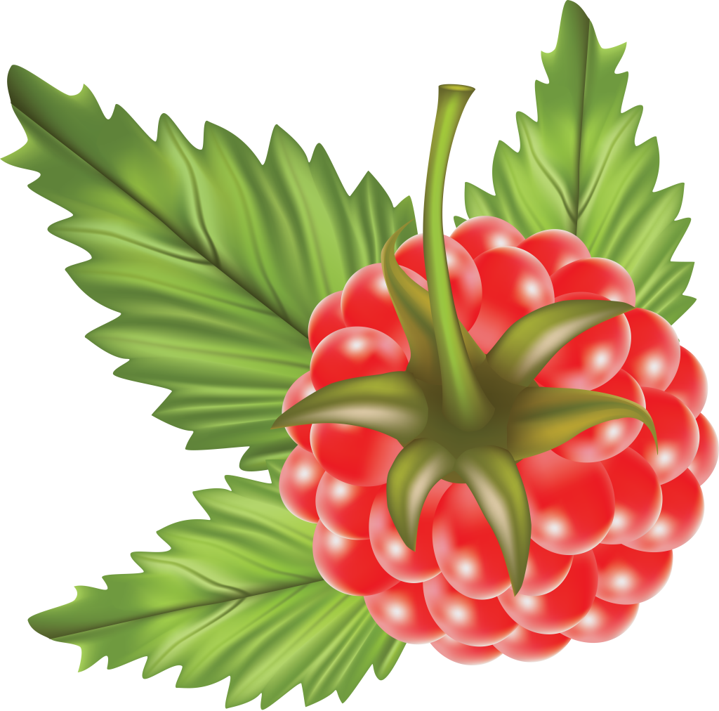 Rasberry PNG Image