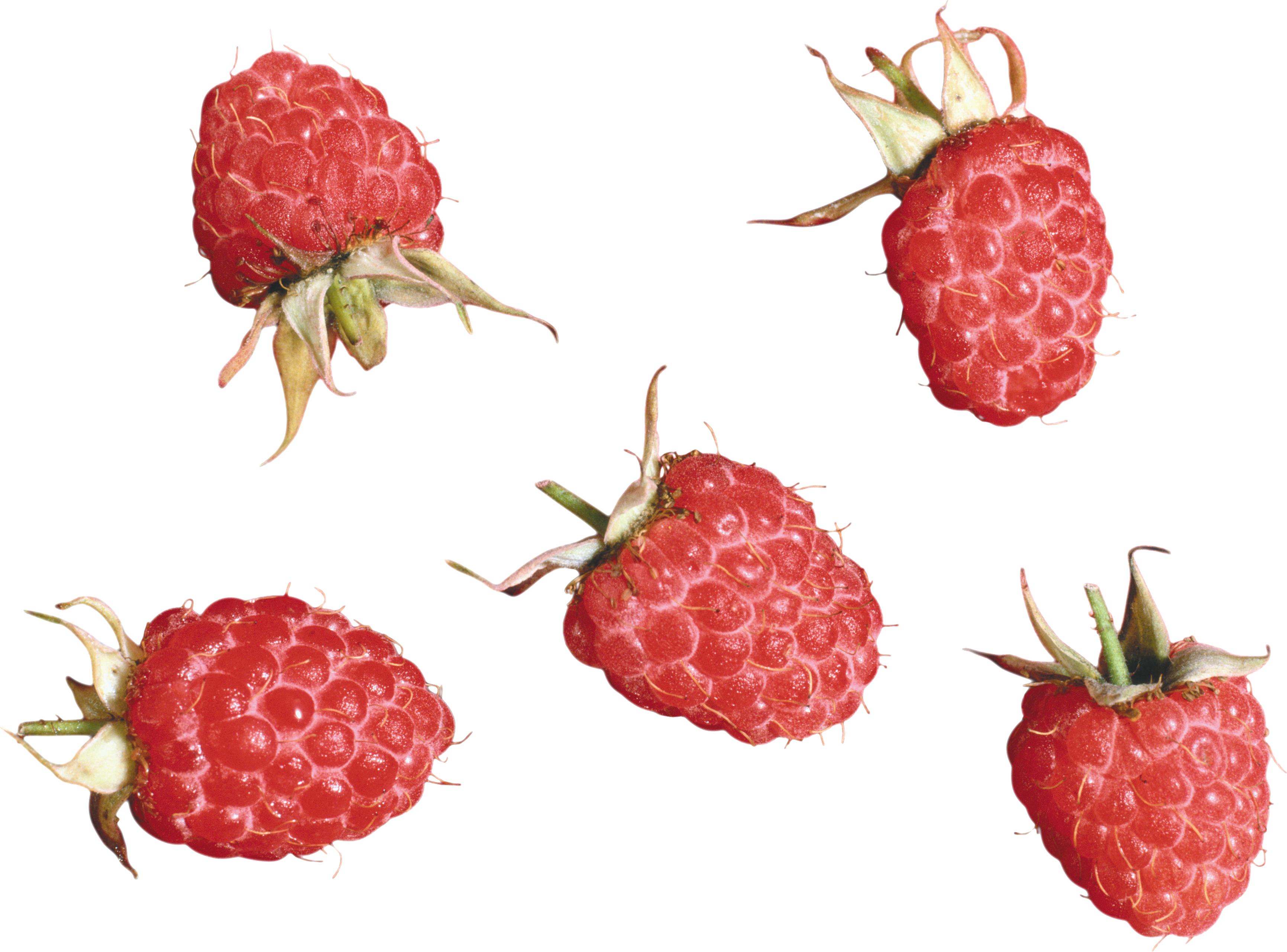 Rasberrys PNG Image