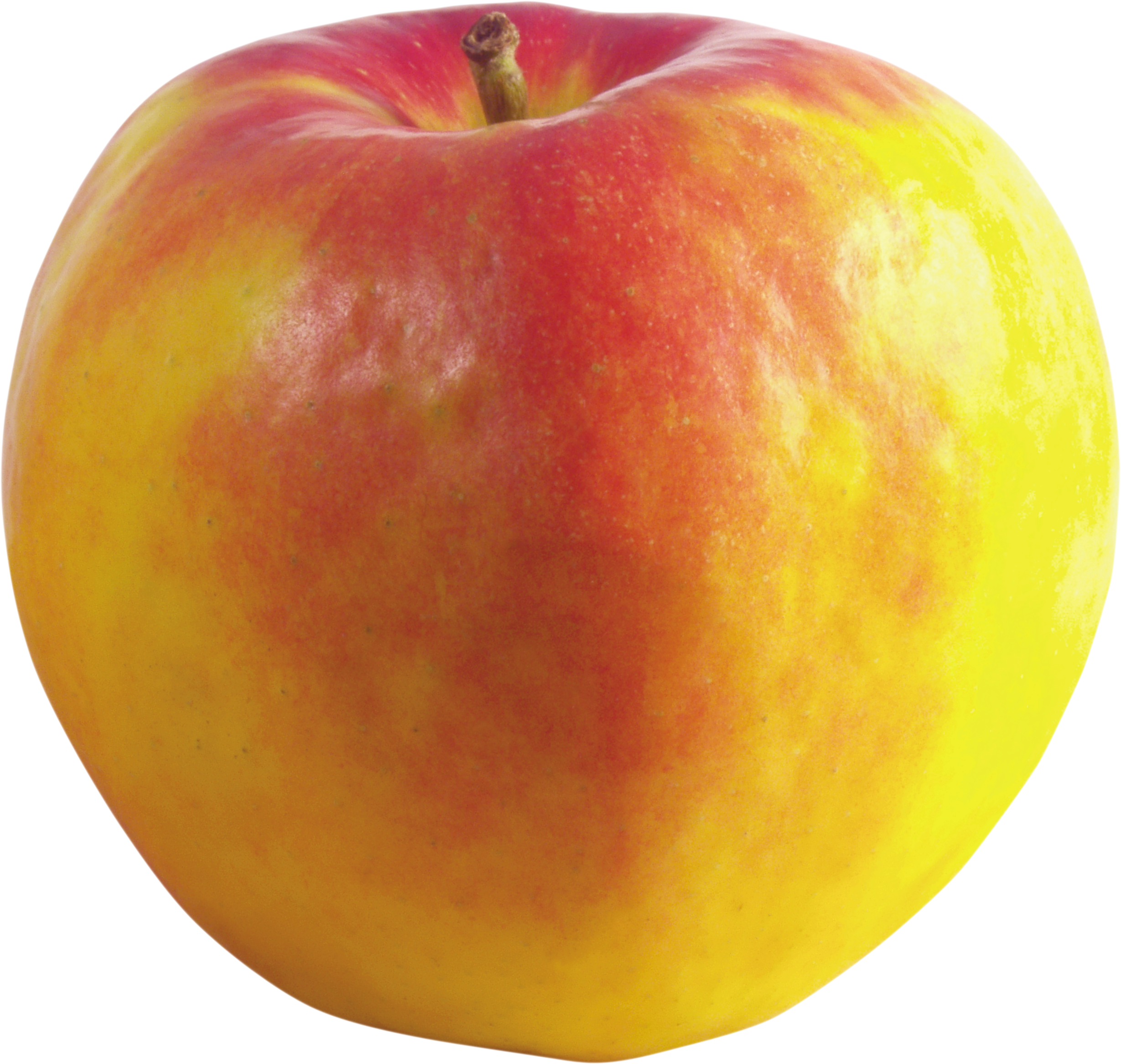 Red and yellow Apple