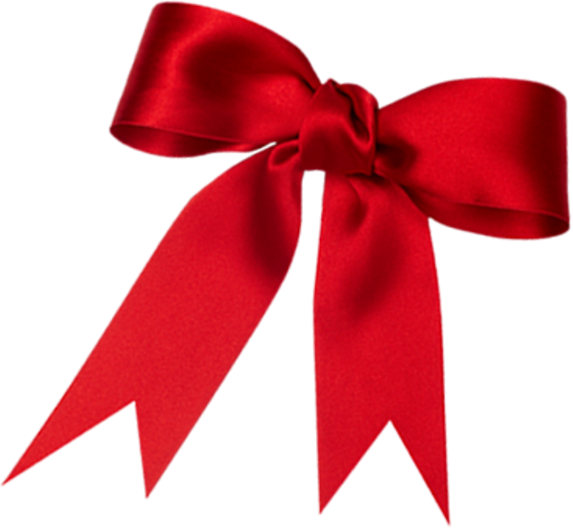 Bow Valentine PNG Image