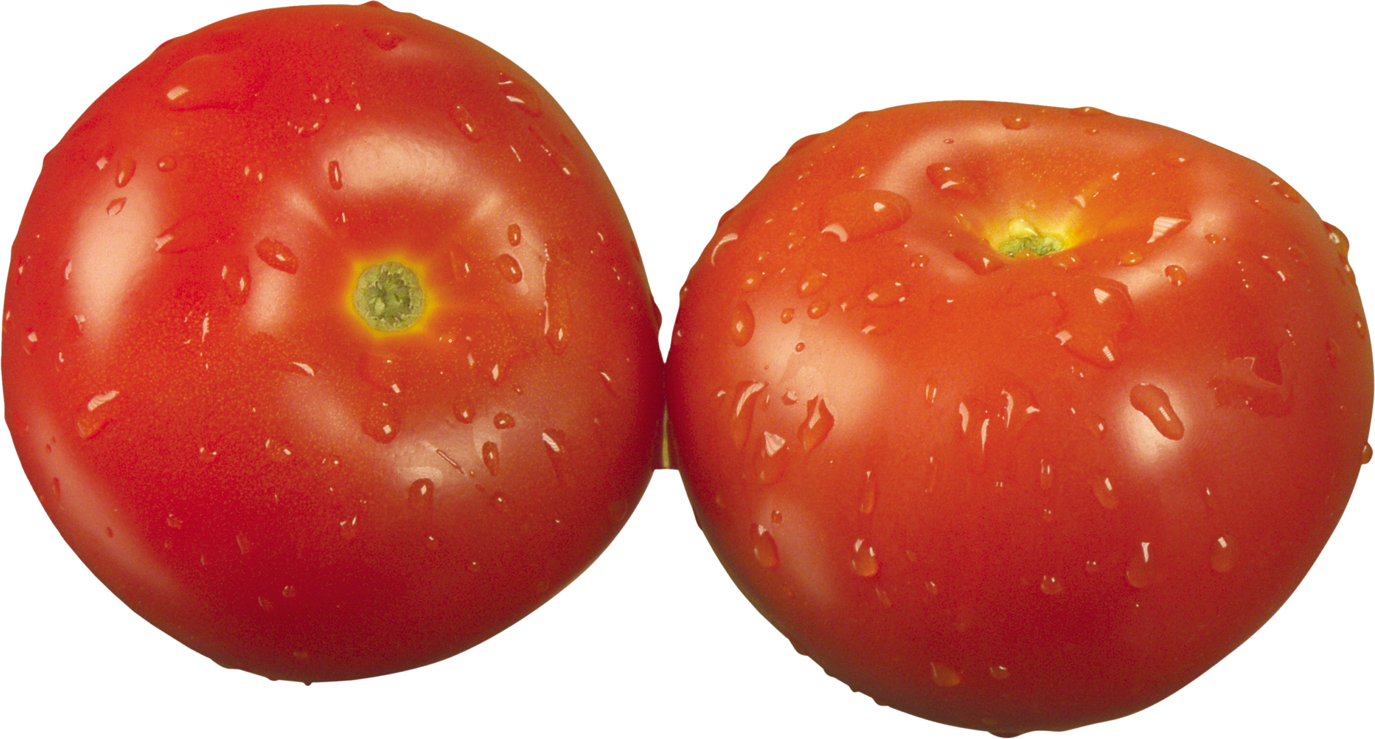Red Tomatoes PNG Image