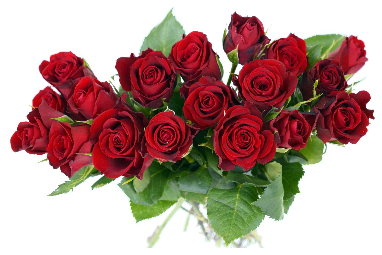 Rose Bouquet PNG Image