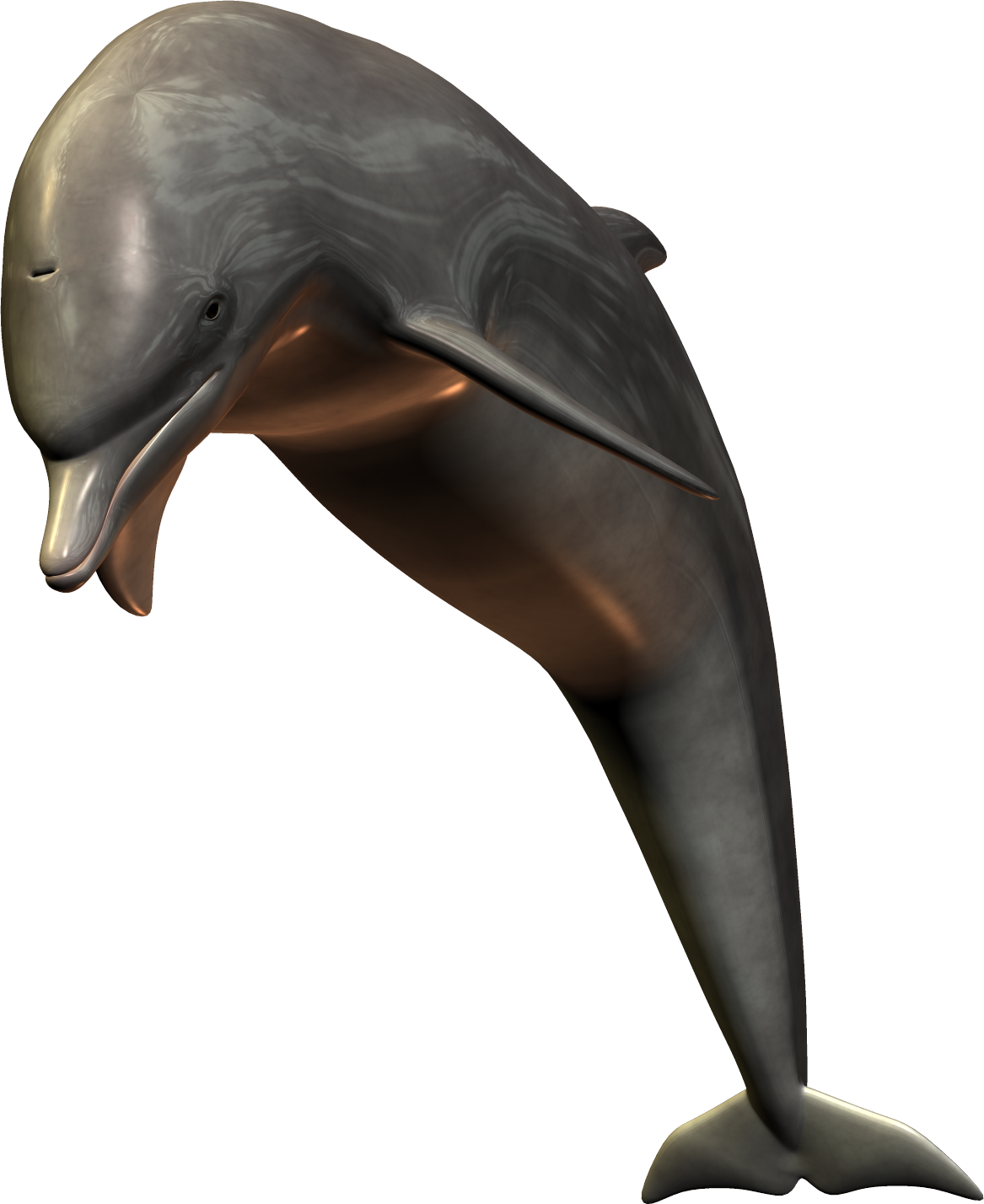 Silver Bottlenose Dolphin Jumping PNG Image