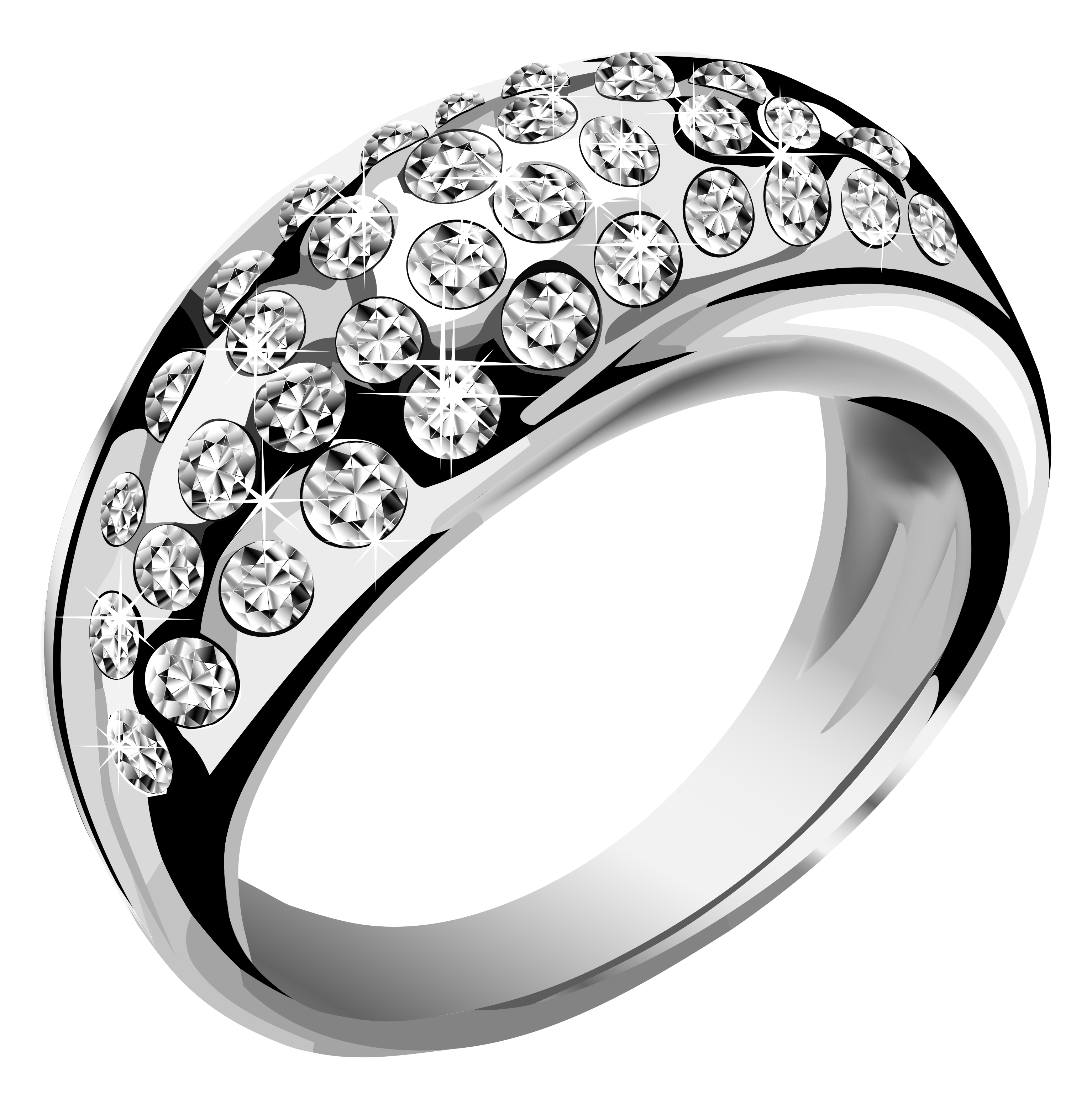 Silver Jewelry PNG Image