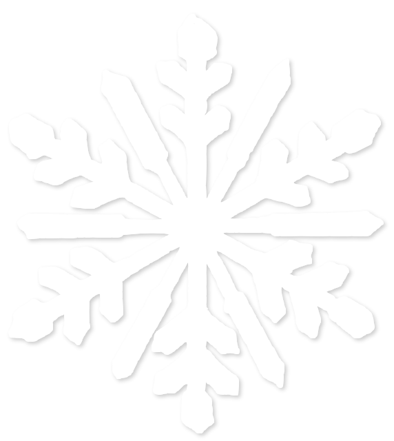 Winter Snowflake Snowy  PNG Image