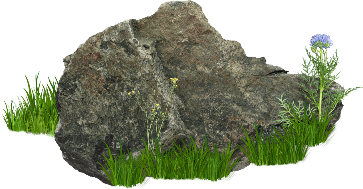 Flower Vector Png Image Purepng: Stones And Rocks PNG Image - PurePNG