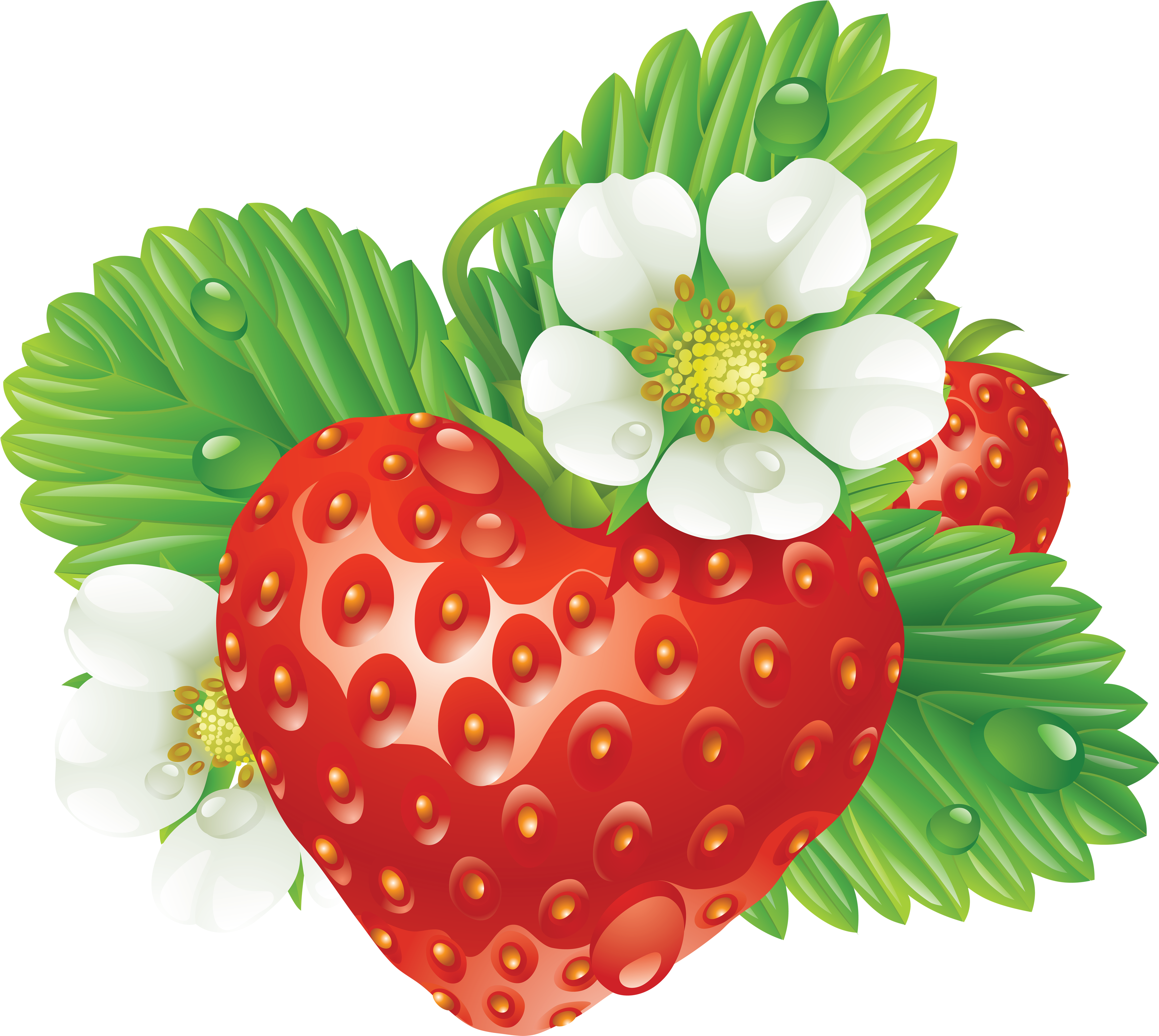 Strawberry Heart-Shaped PNG Image