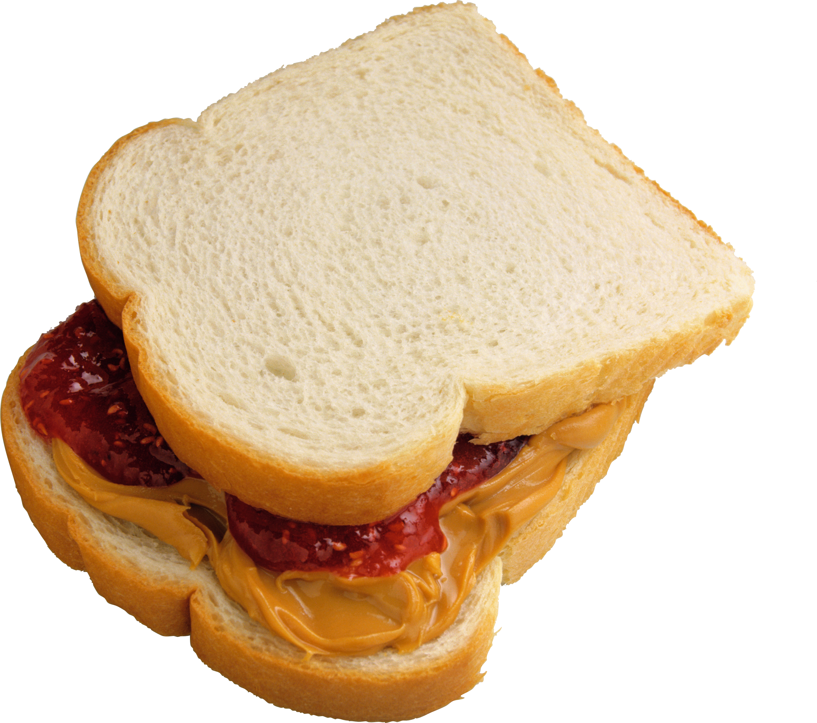 Toast Salmi Mustard PNG Image