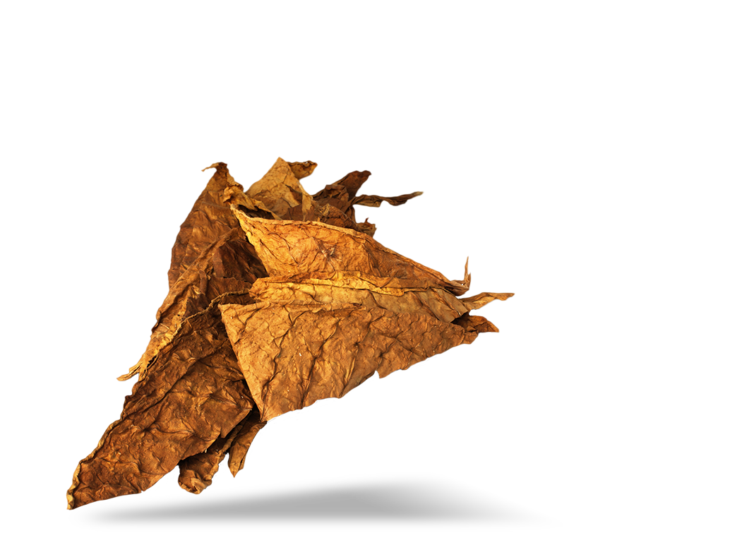 Tobacco PNG Image