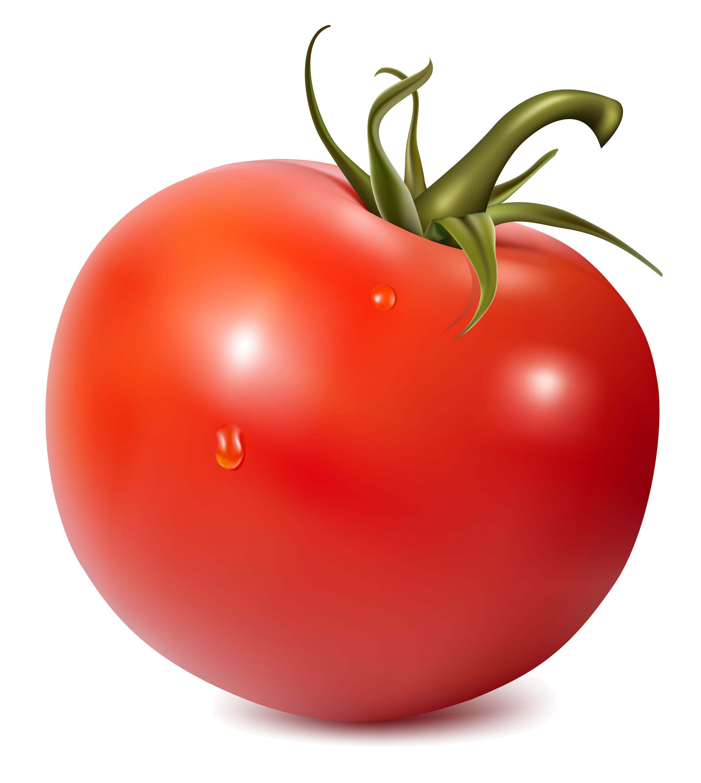 Tomato PNG Image