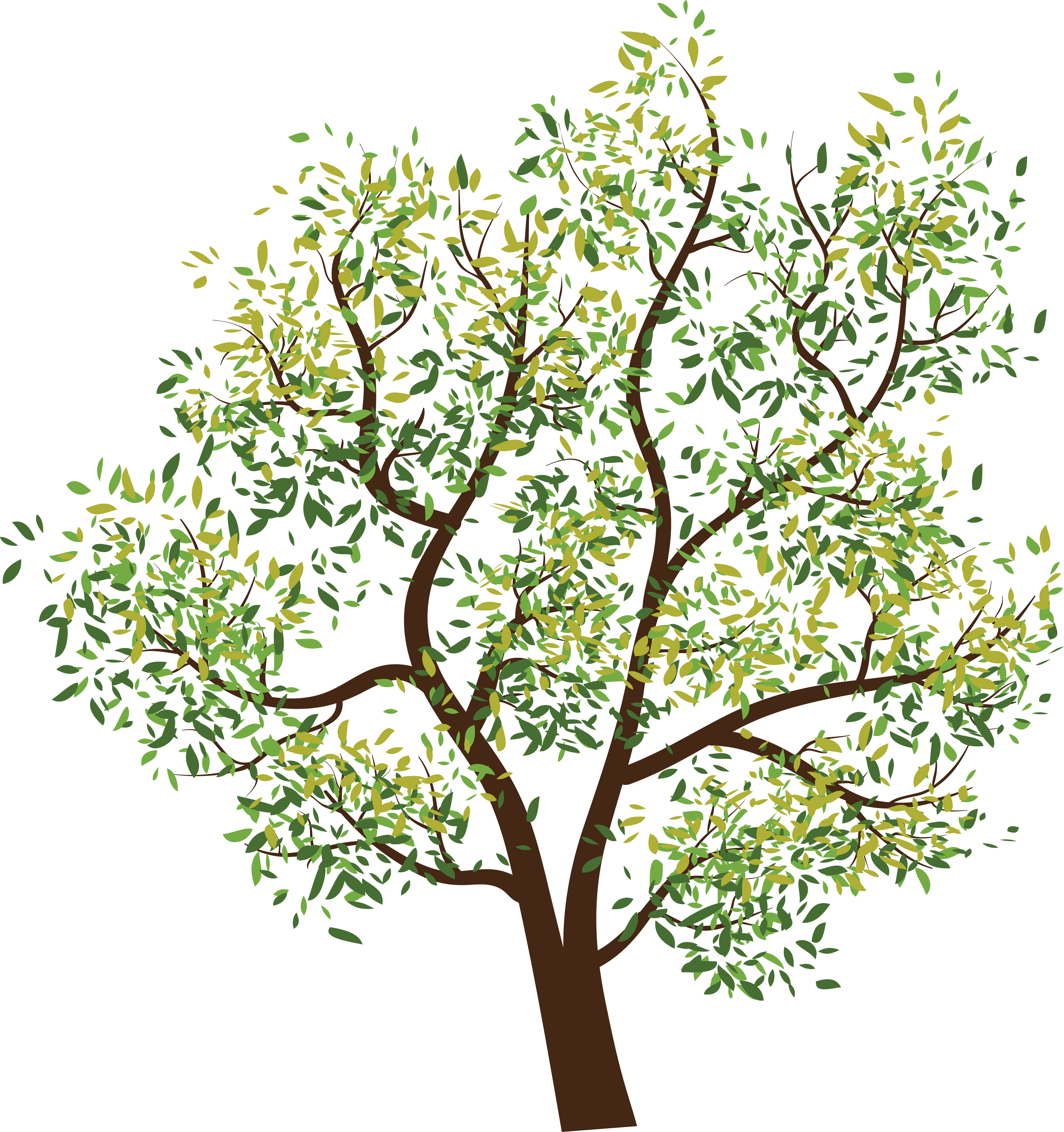 Leafy Tree PNG Image
