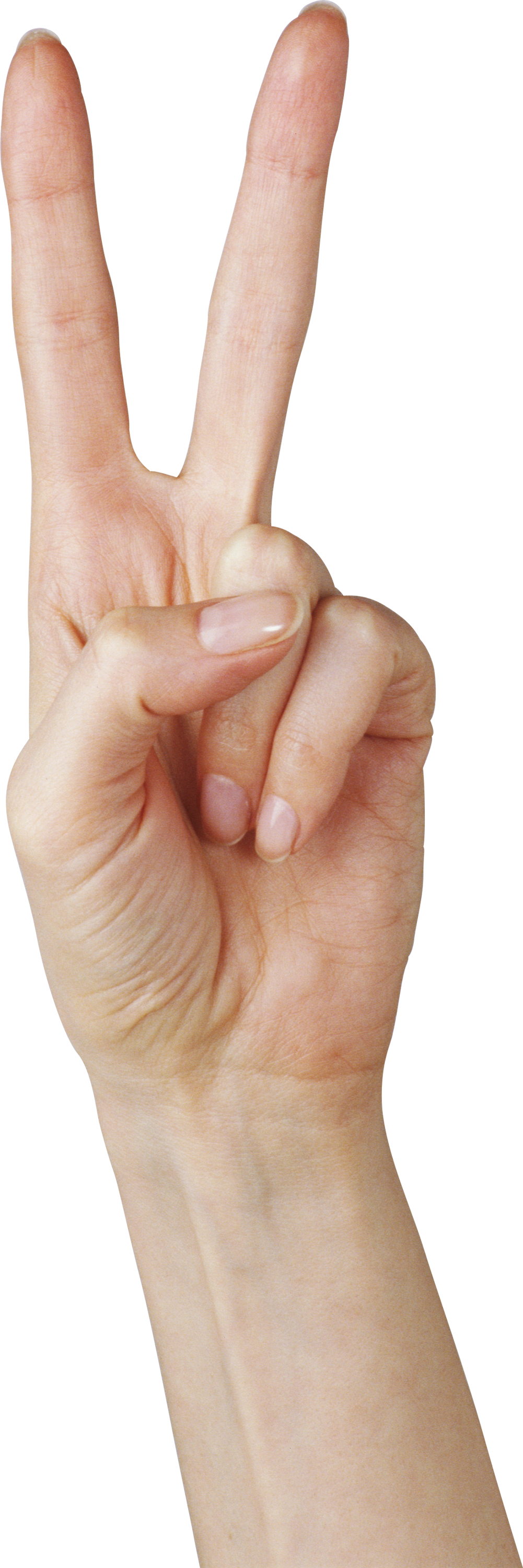 Two Finger Hand PNG Image