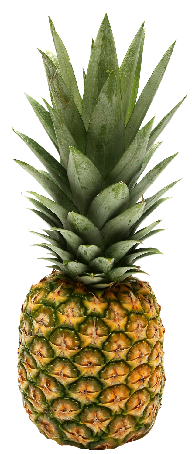 Two Pineapple PNG Image