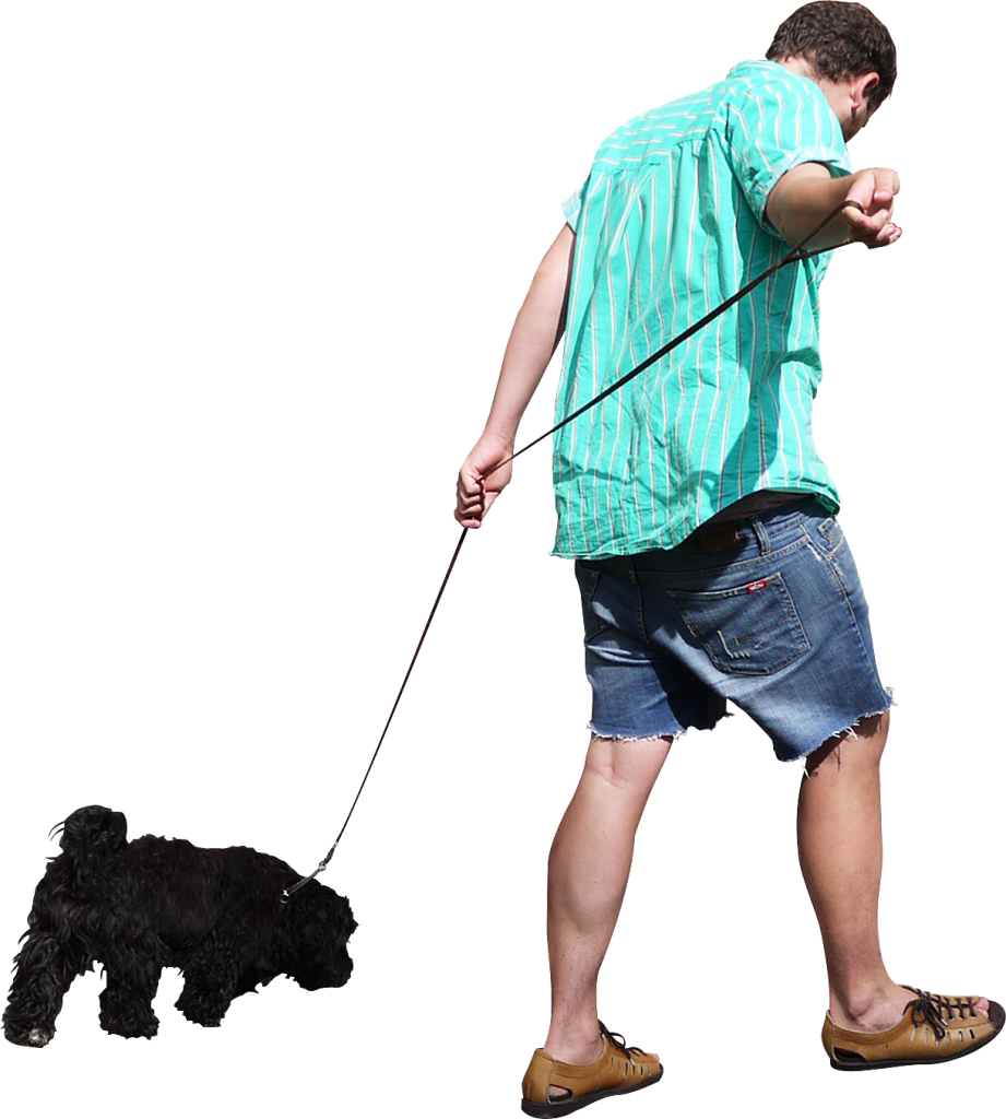 Pictures Of Peole Walking Dogs