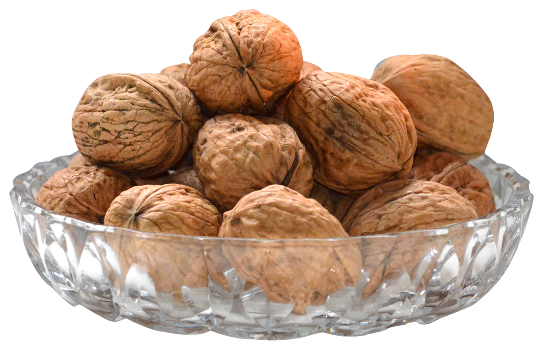Walnut on Bowl PNG Image