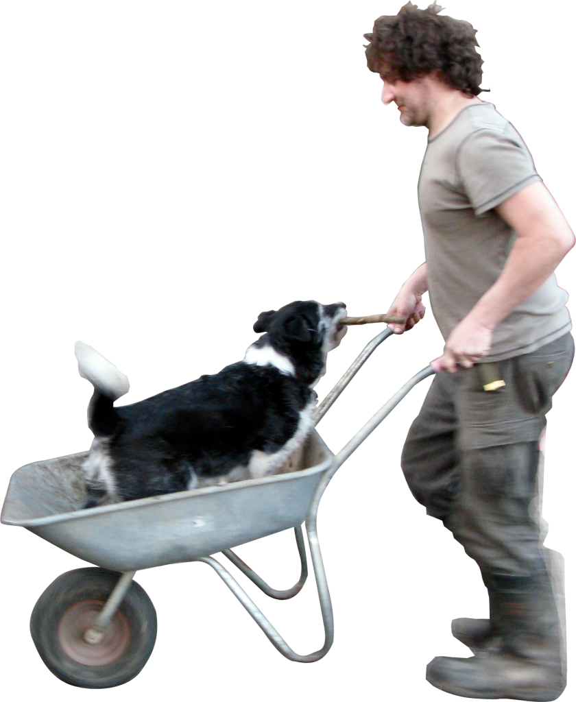 Wheelbarrow Dog