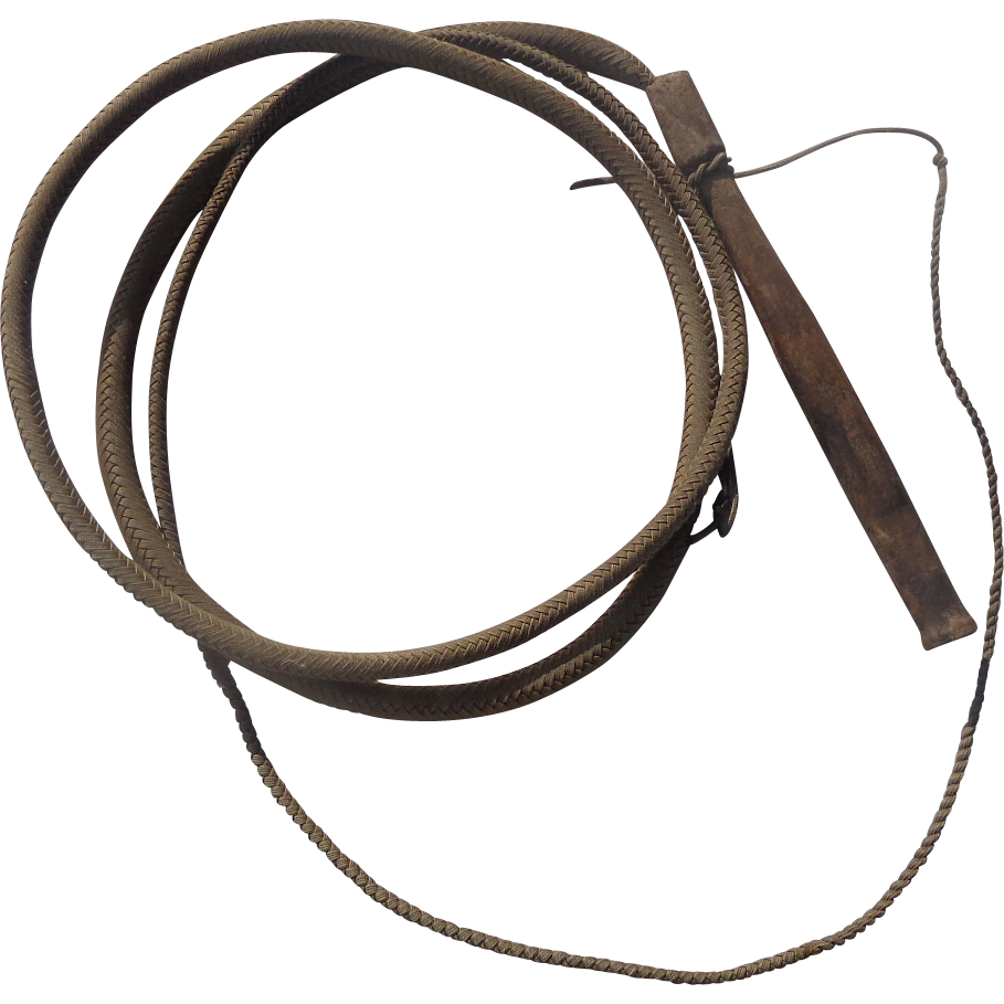 Whip PNG Image