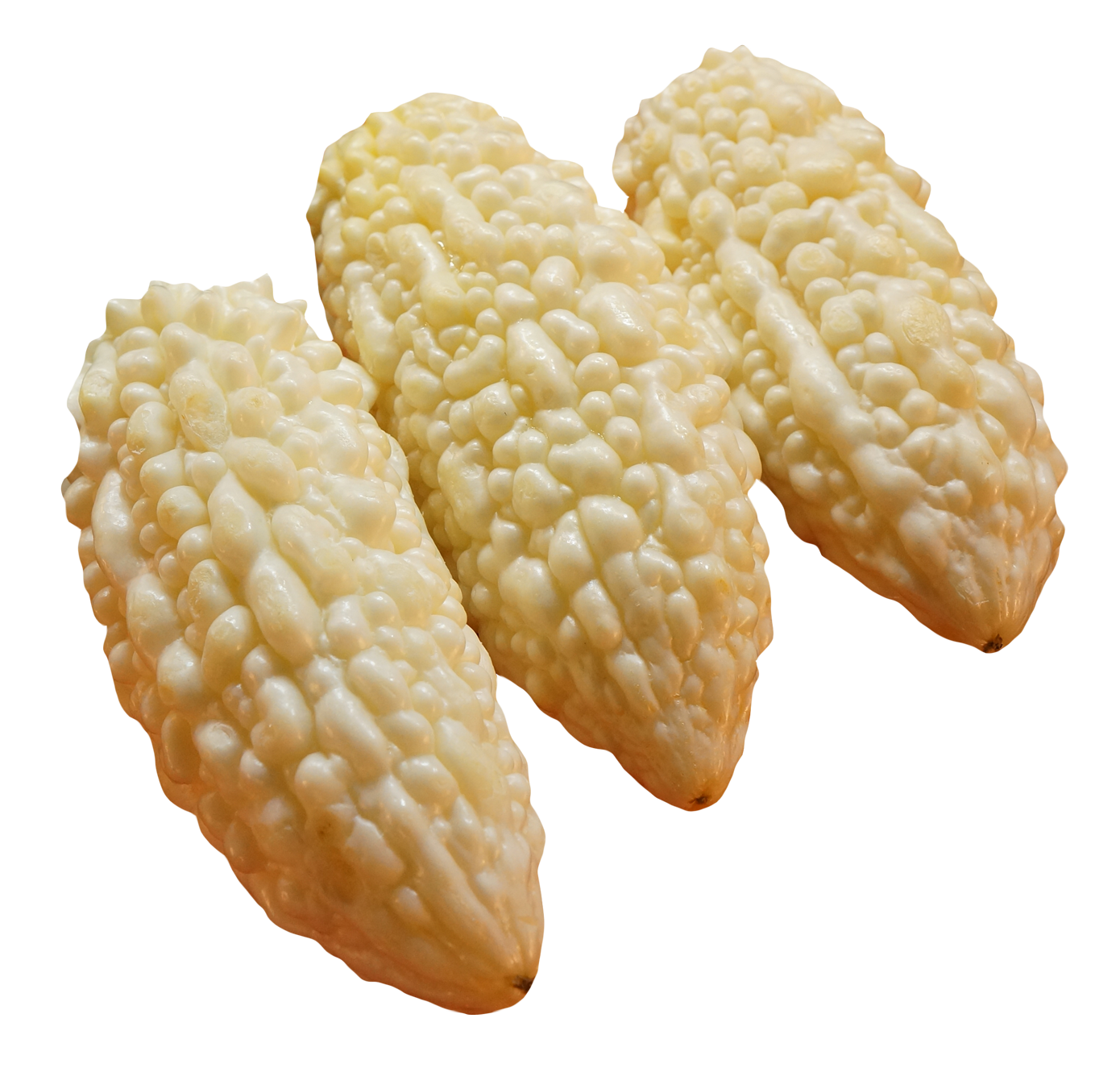 White Bitter Gourd PNG Image