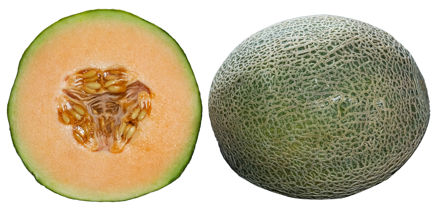 Whole and Half Cantaloupe Slices